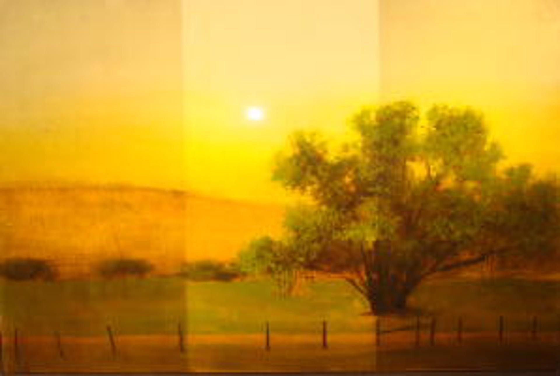 Sunday Sunset by Tal Walton
