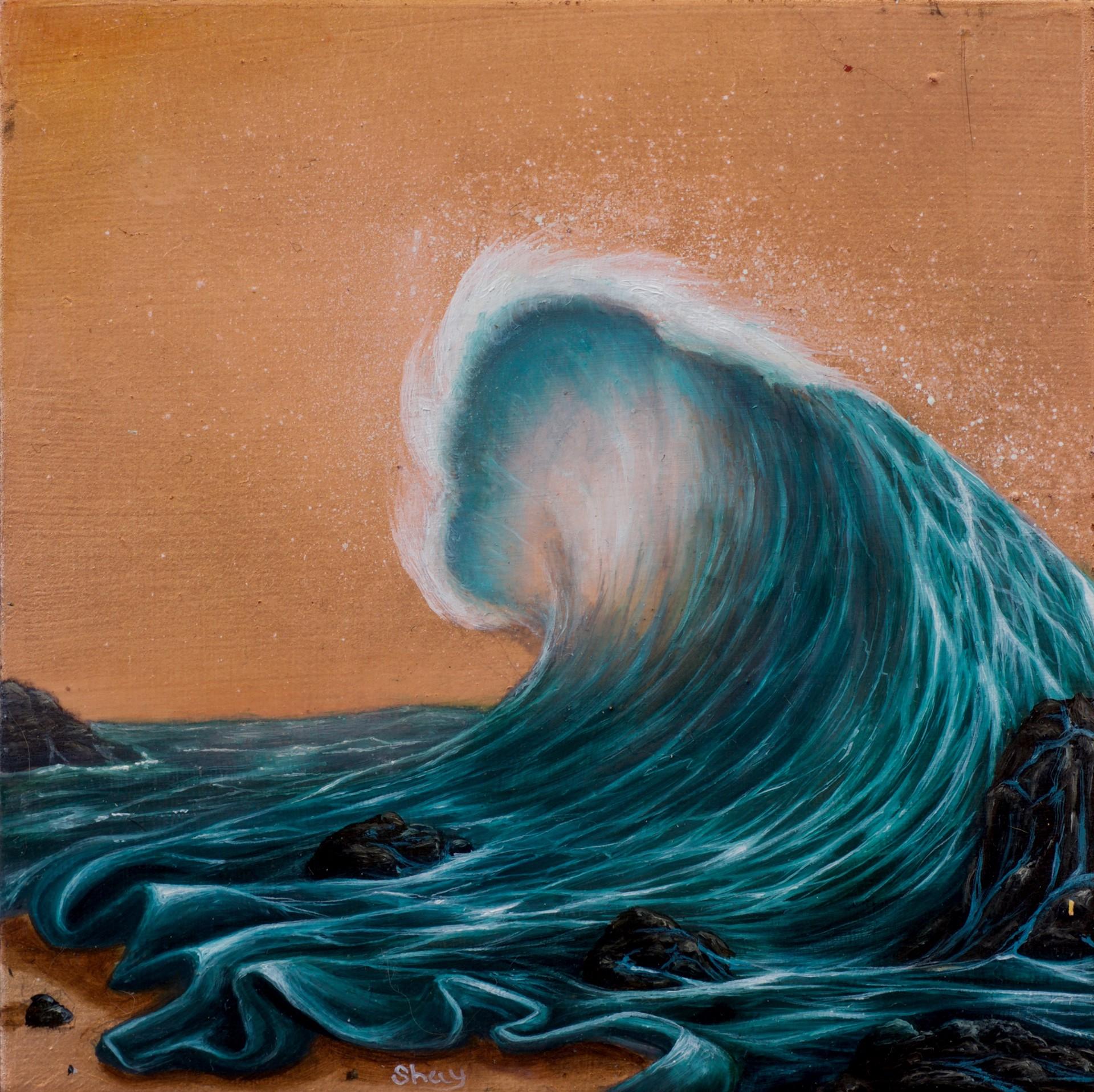 The Warm Wave by Shay Davis