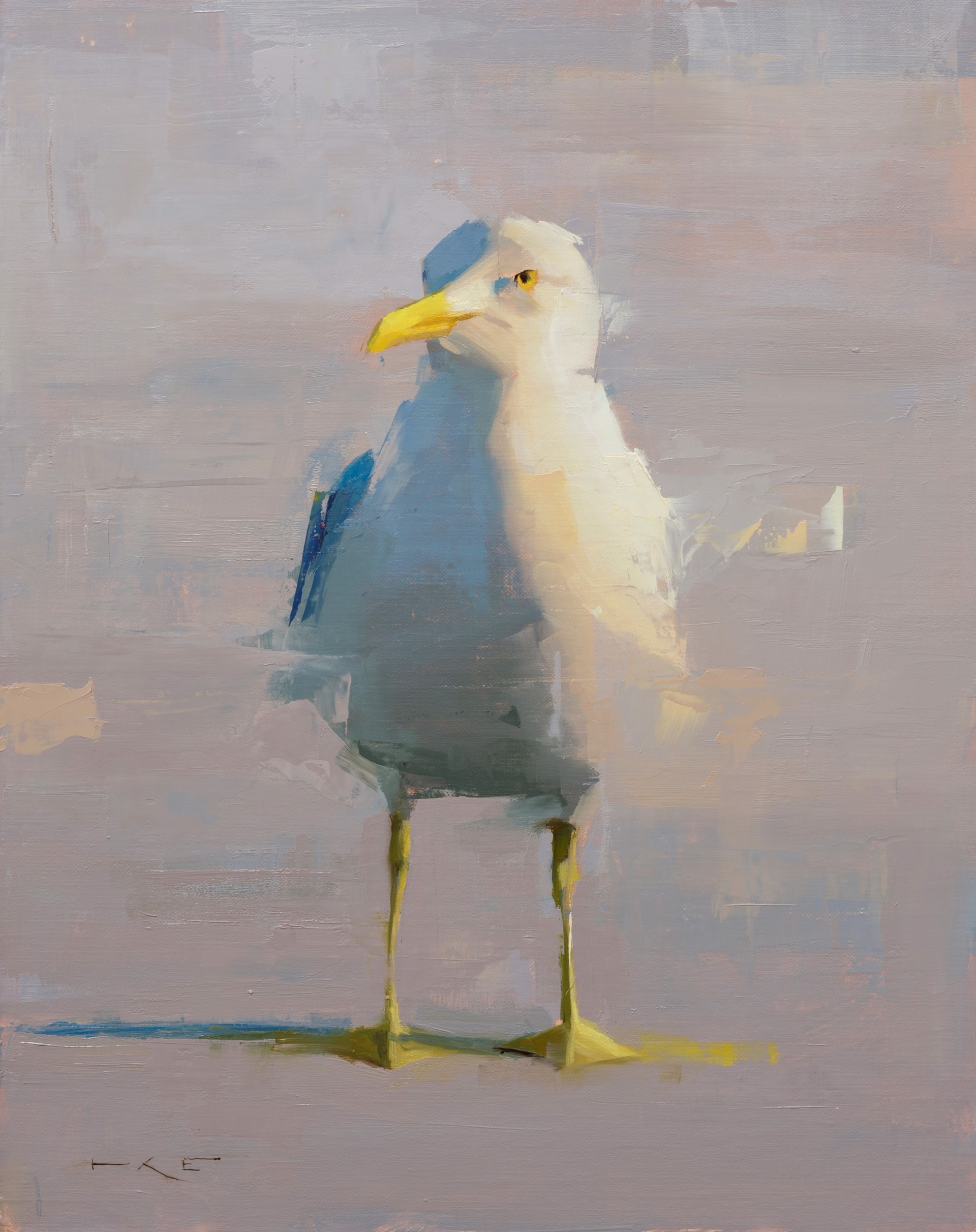 Seagull by Thorgrimur Einarsson