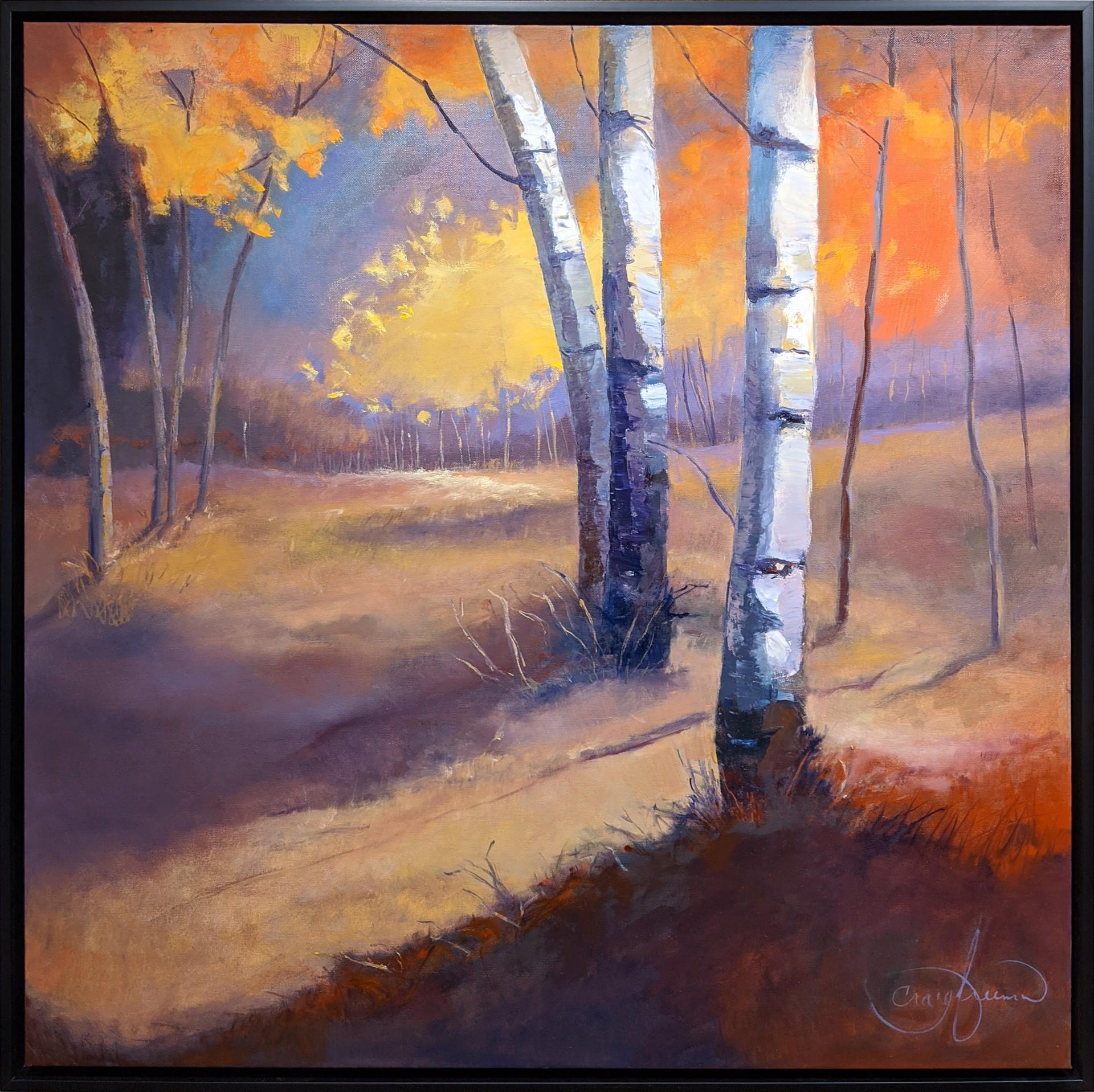 Aspen Meadow by Craig Freeman