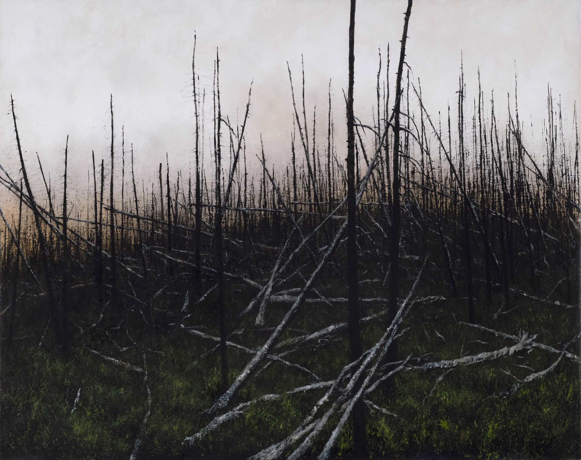 Prescribed Burn by Lisa Lebofsky