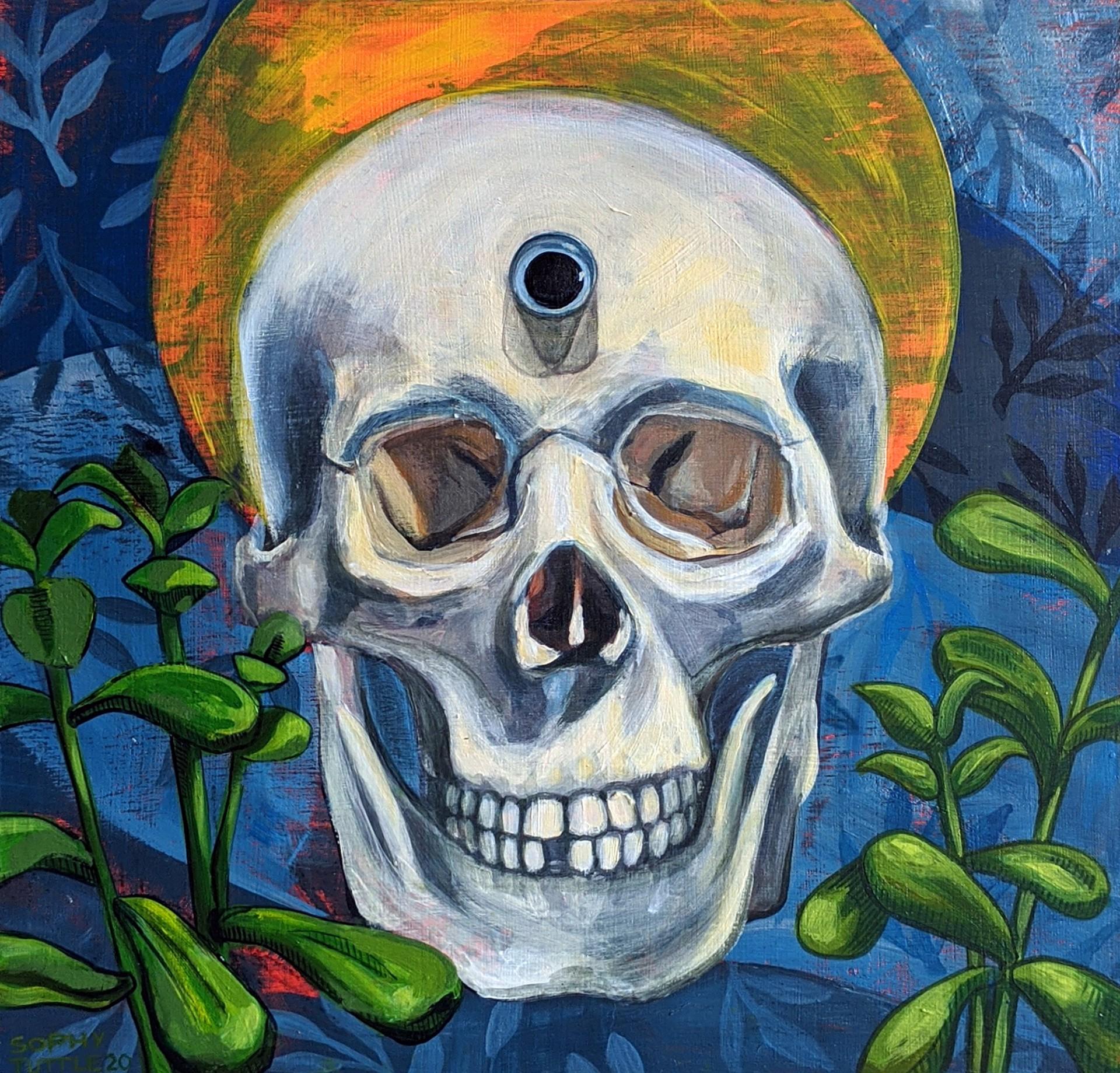Third Eye by Sophy Tuttle