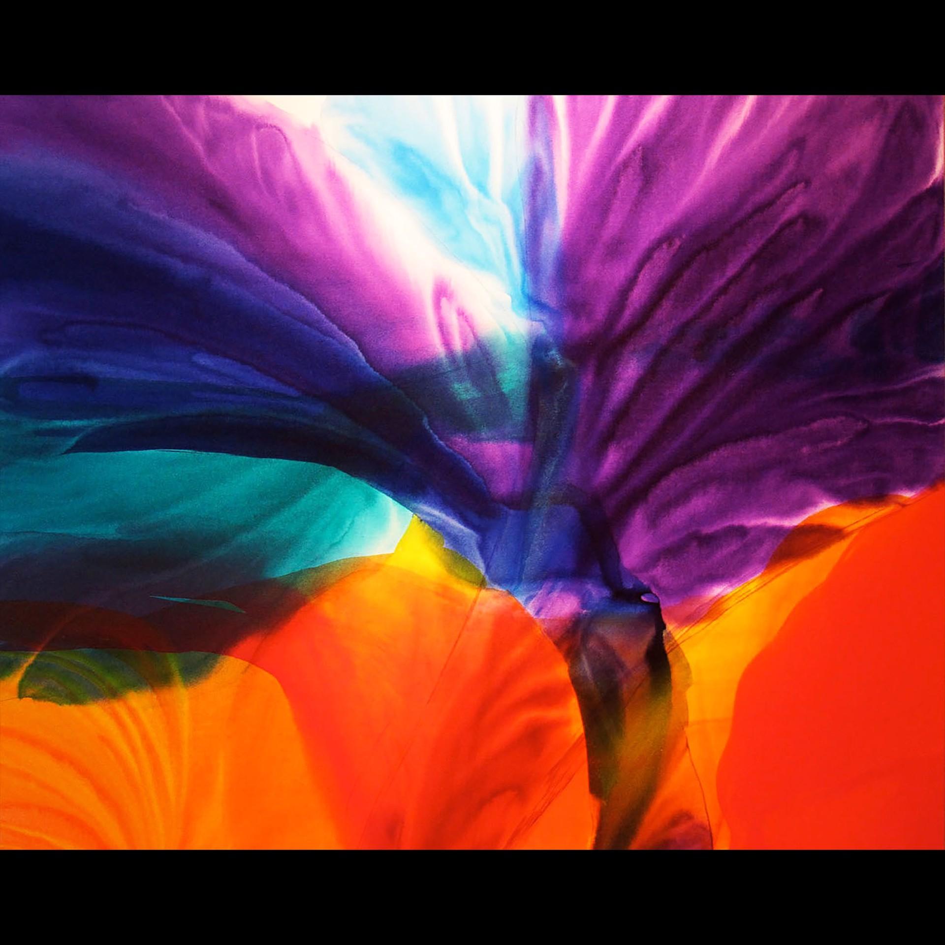 Cosmic Butterfly by Jill Amundsen