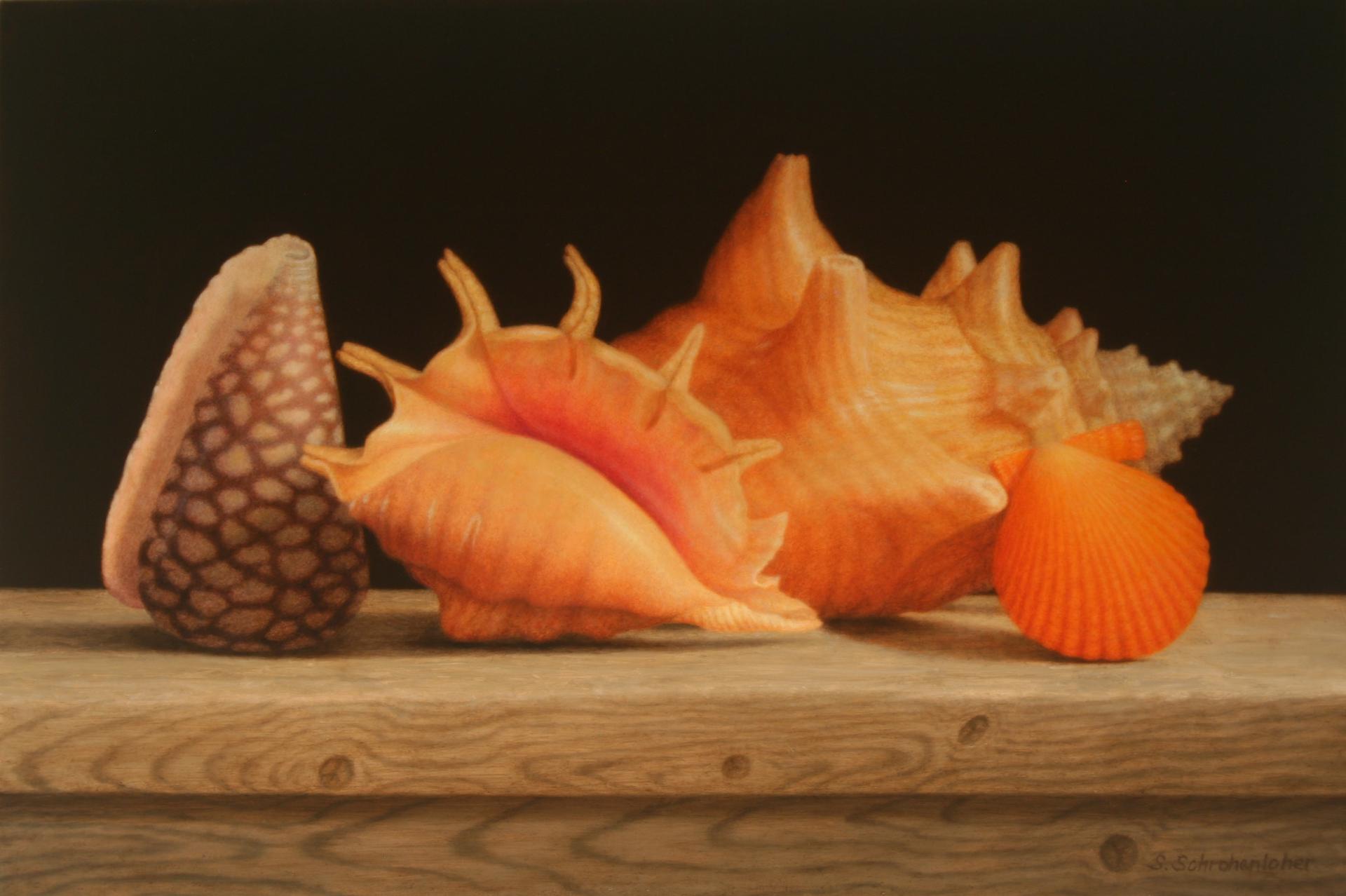 Sea Life Quartet by Sally Schrohenloher