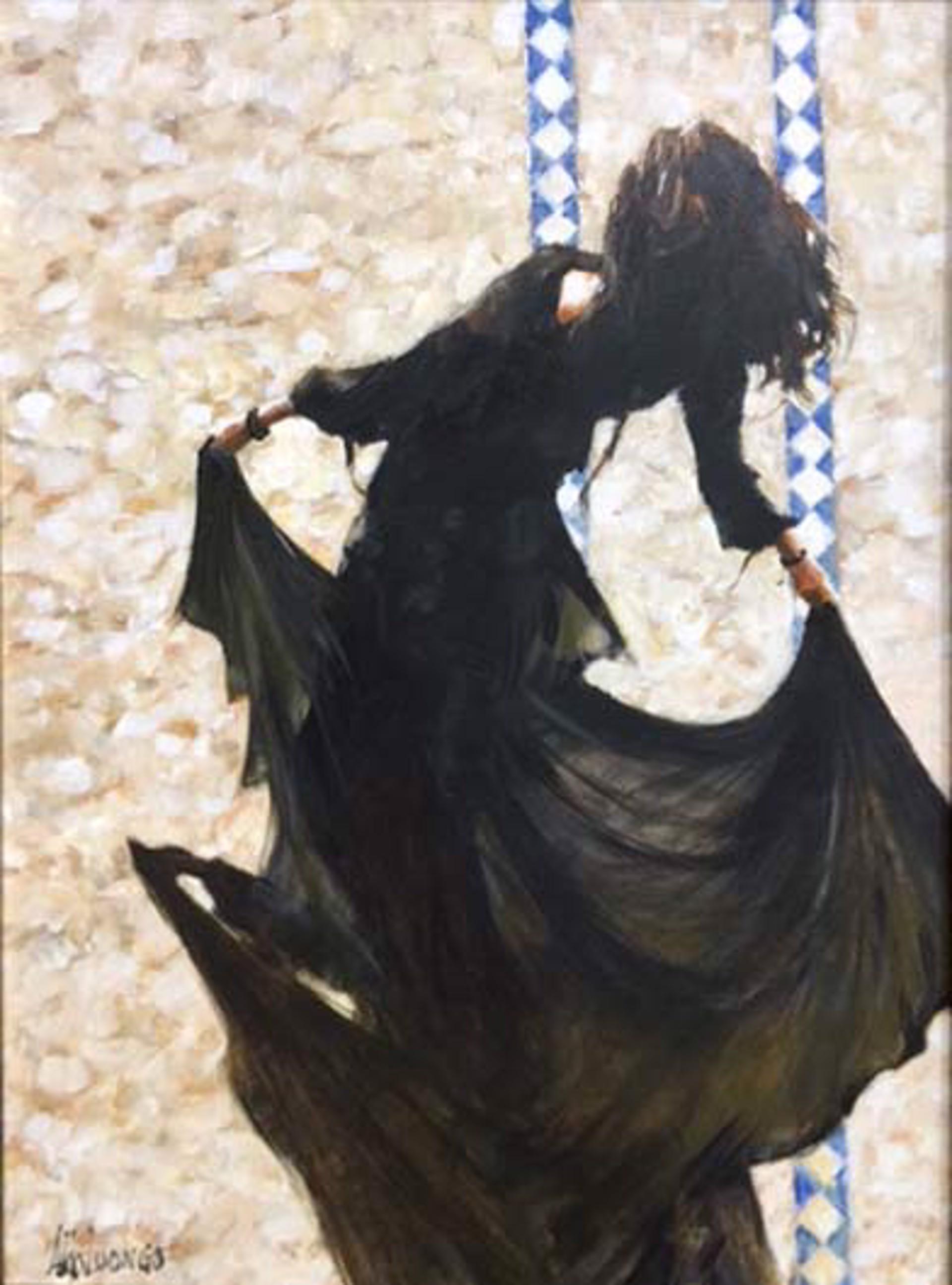 Spanish Passion & Cobblestones II by Aldo Luongo
