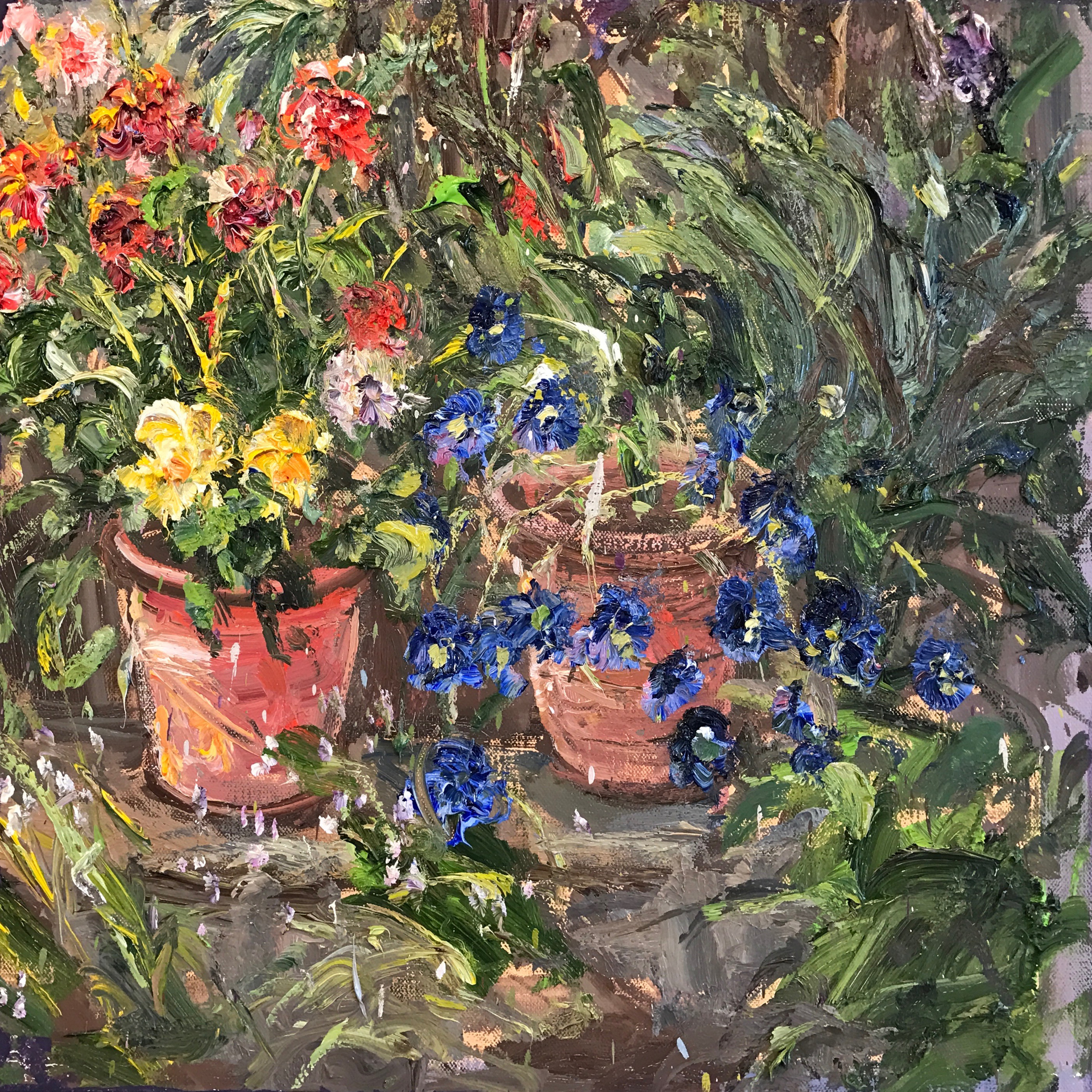 Potted Plants in My Patio by Bruno Zupan