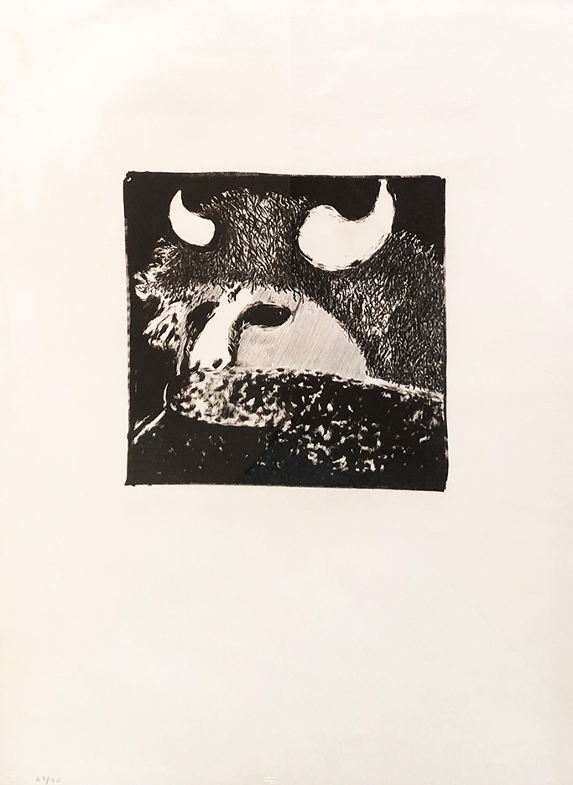 Buffalo Dancer by Fritz Scholder