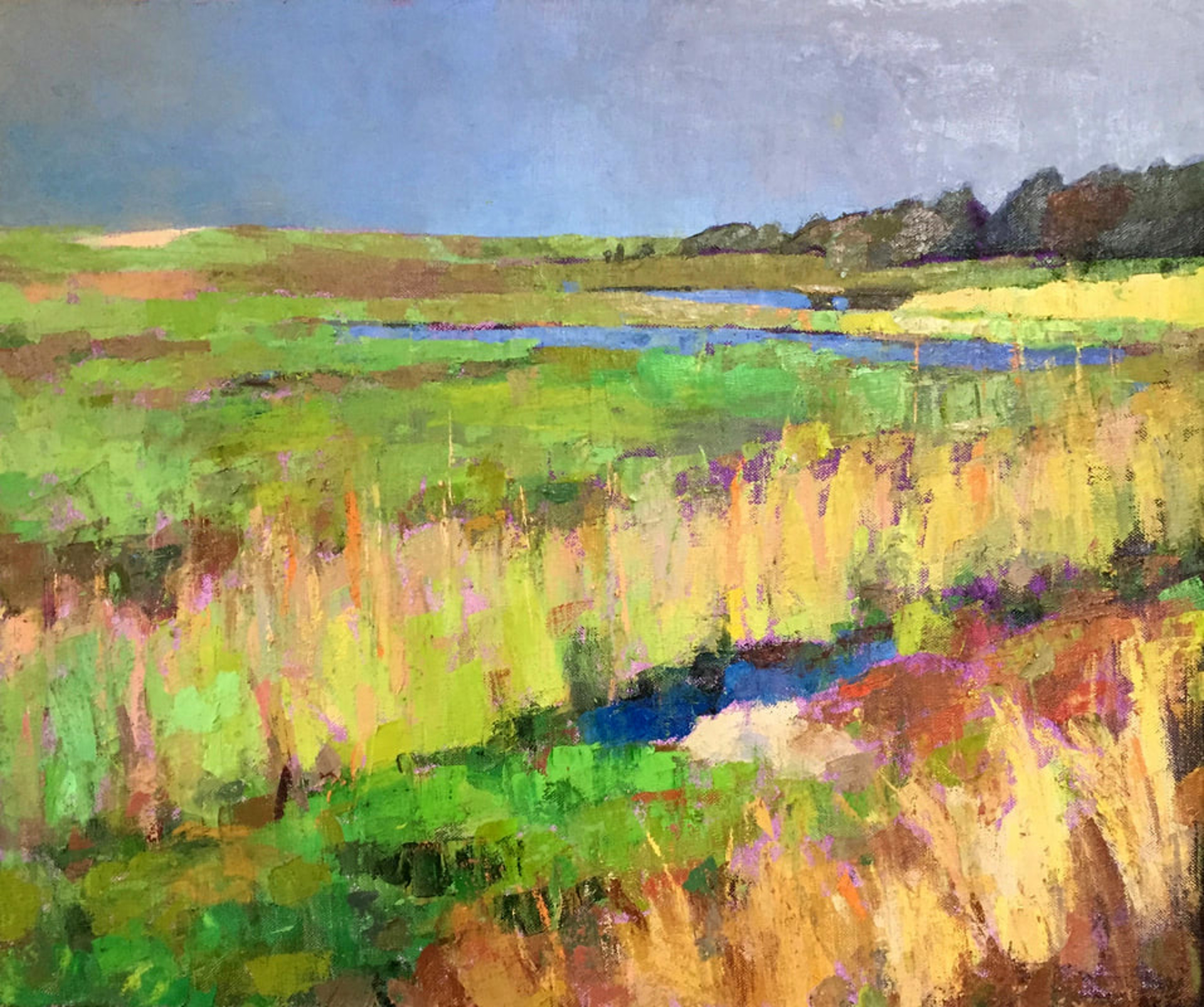 Marshes by Larry Horowitz