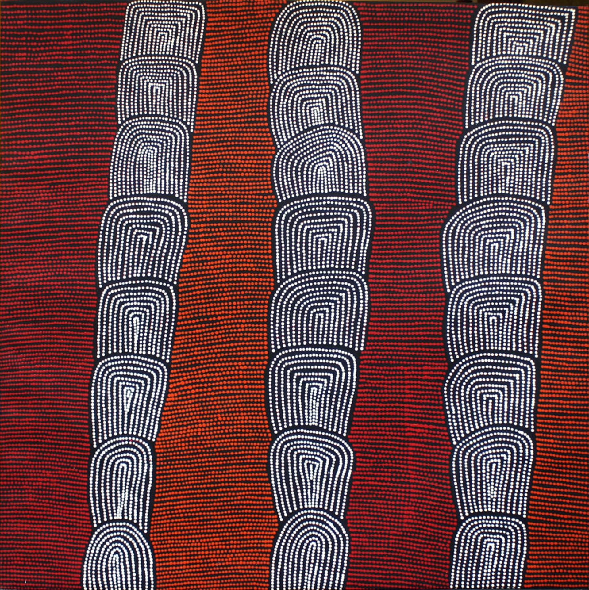 Women's Dreaming Sites by Australian Aboriginal Artists