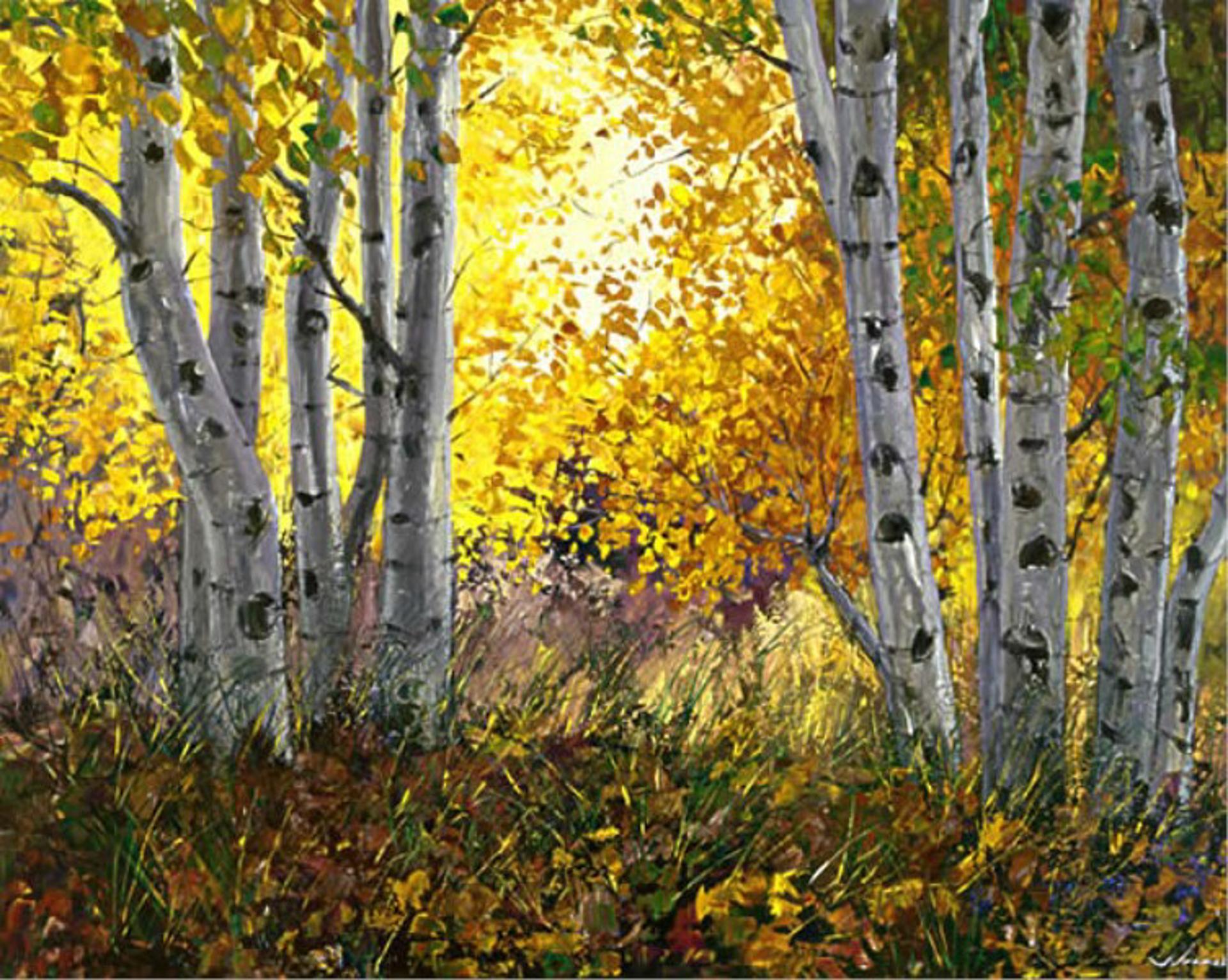 Golden Sunrise by Jennifer Vranes