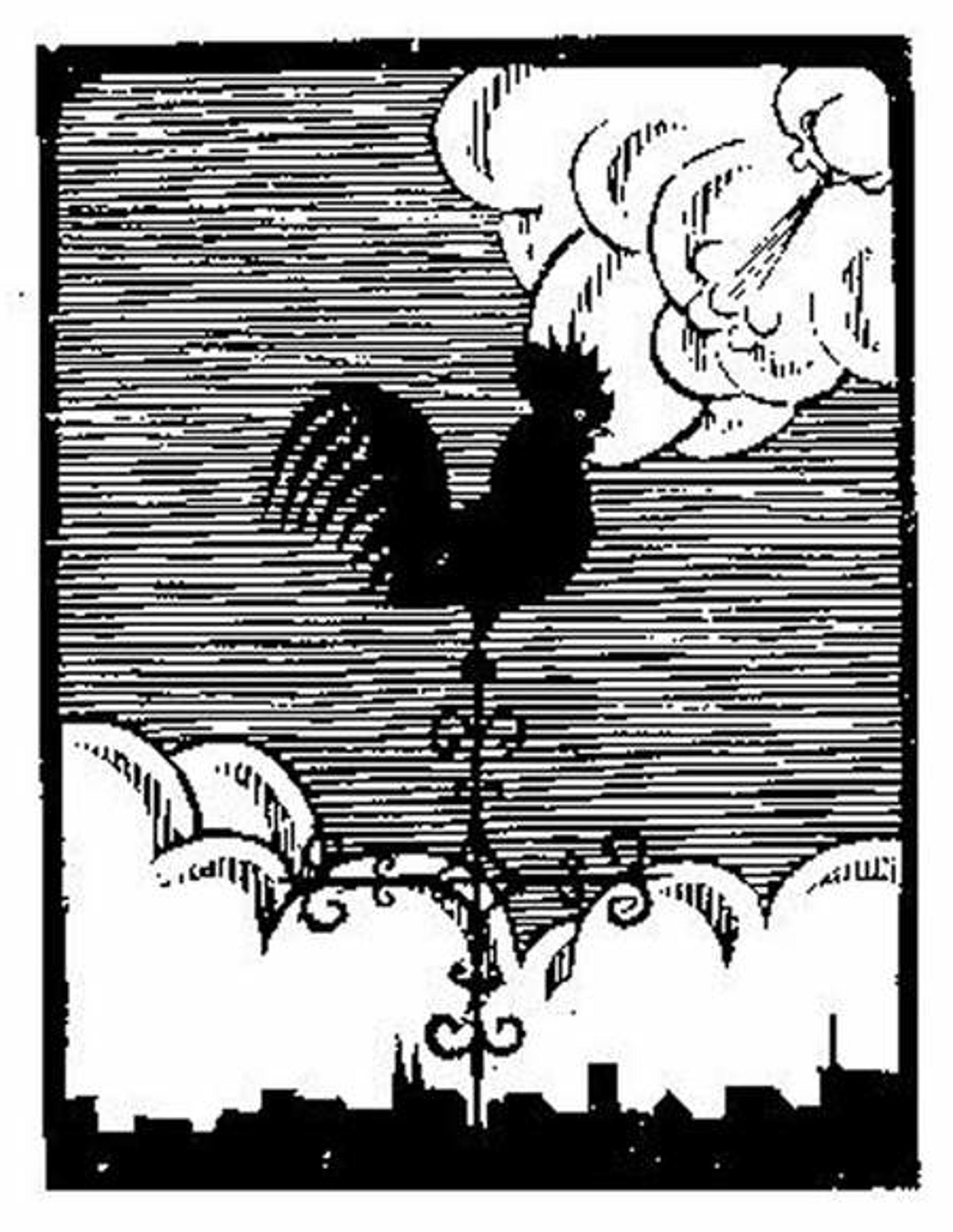 Flor de Pascua - The Weathercock by M.C. Escher
