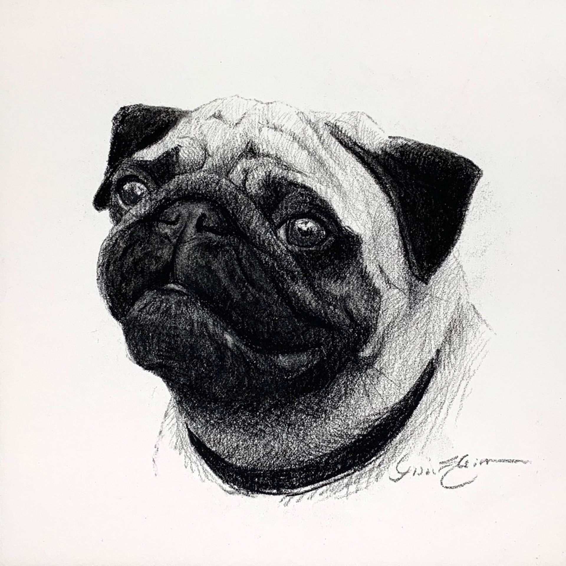Pug Mug by Lisa Gleim