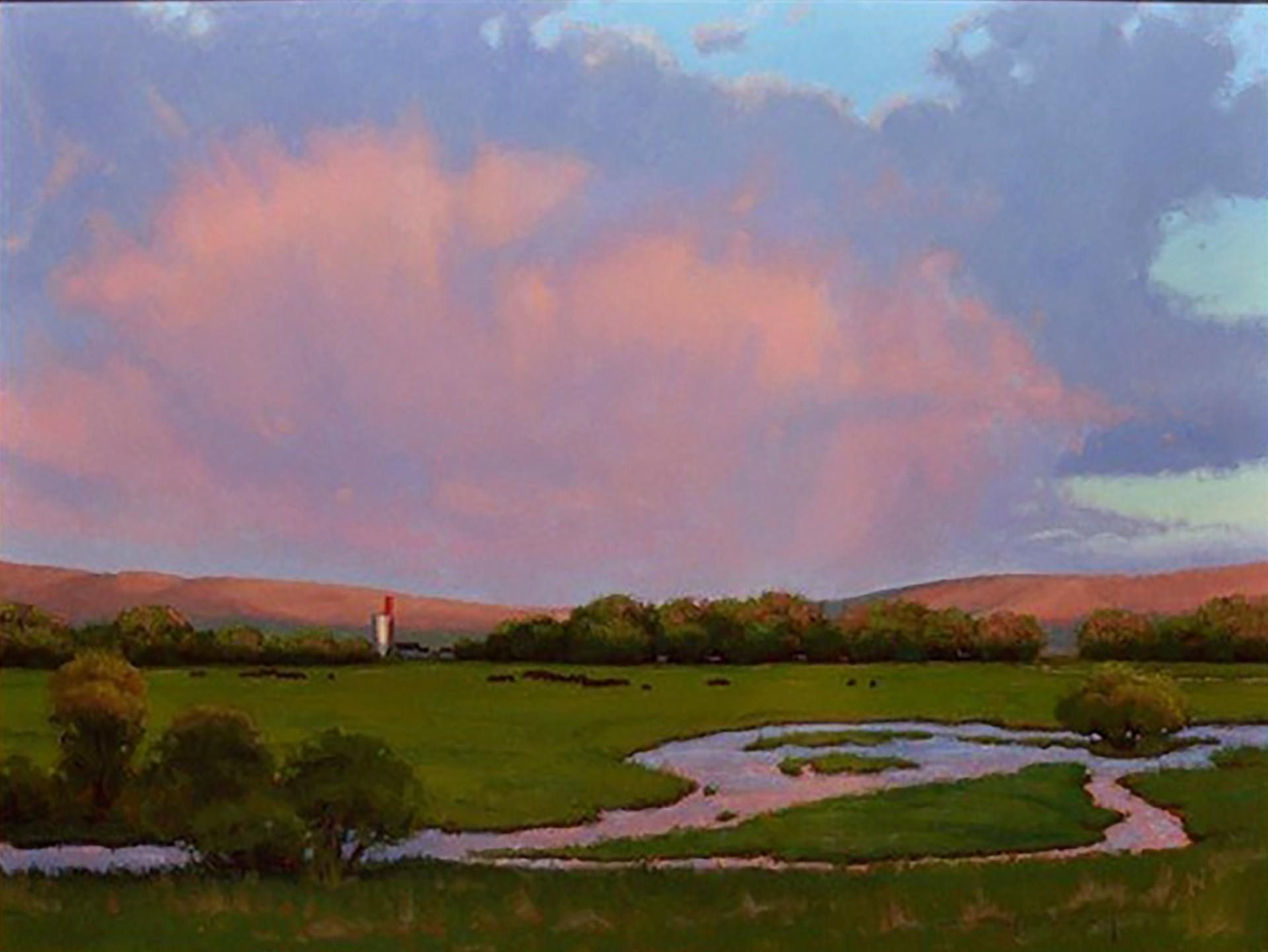 Heaven's Blossom by Warren Neary