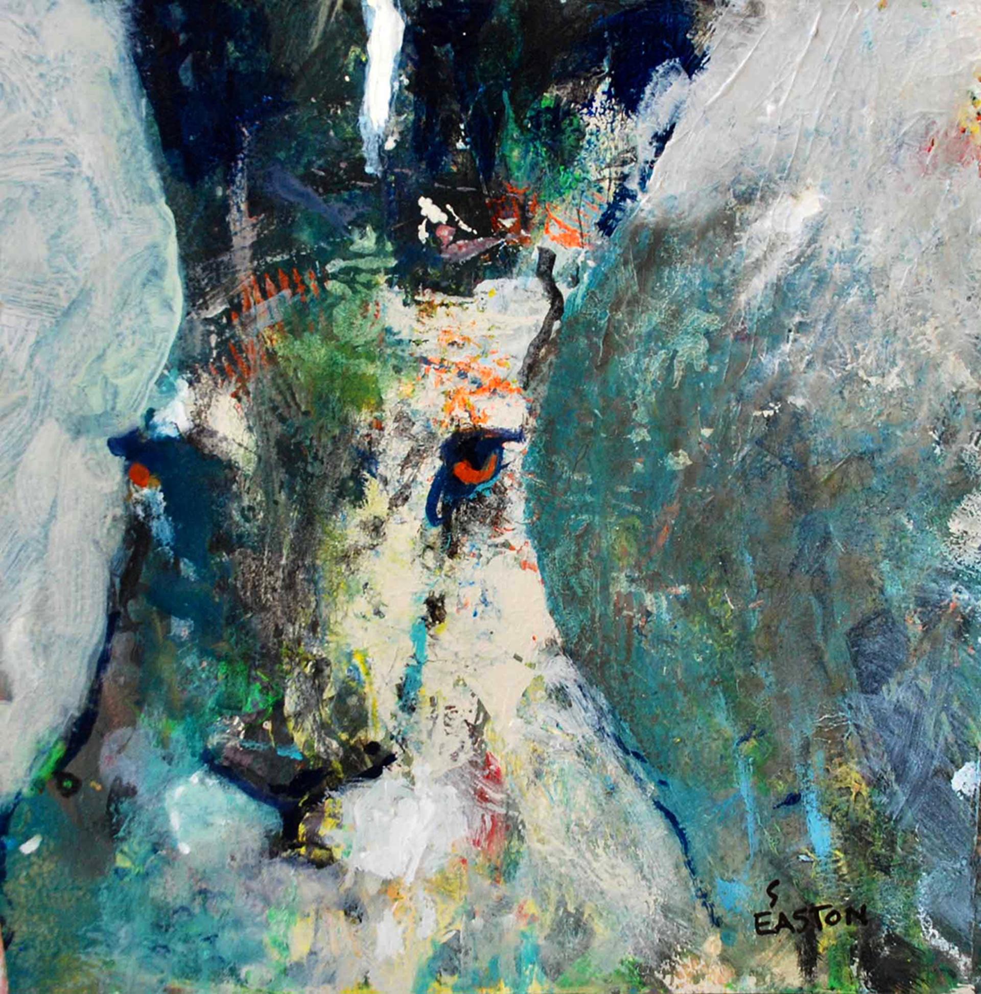 Next by Susan Easton Burns