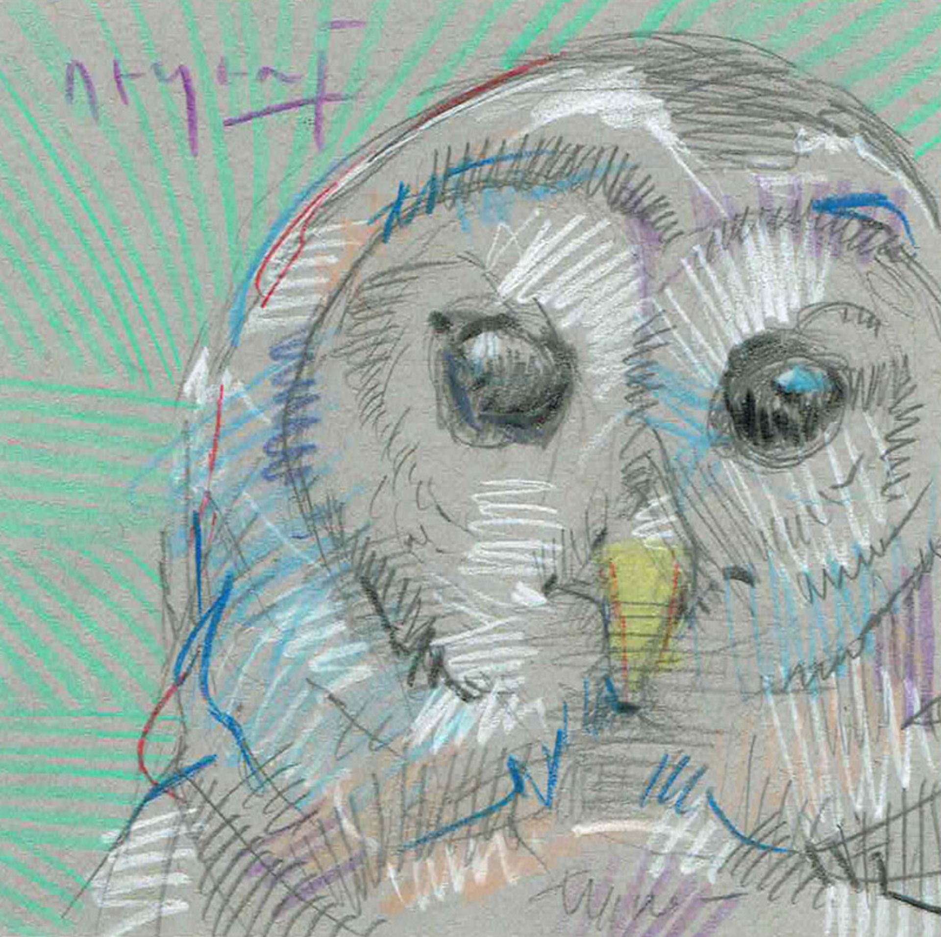 Mini Farm: Owl No. 1 by Tim Jaeger