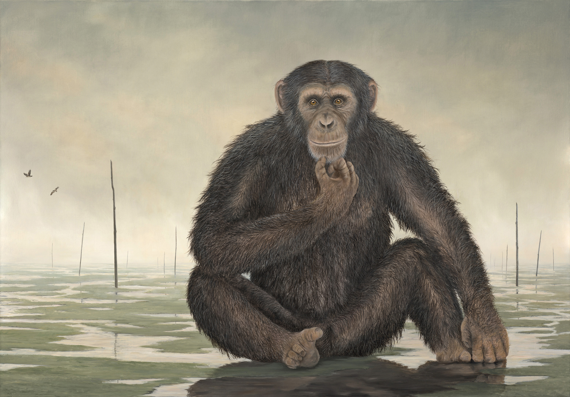 The Nomad by Robert Bissell