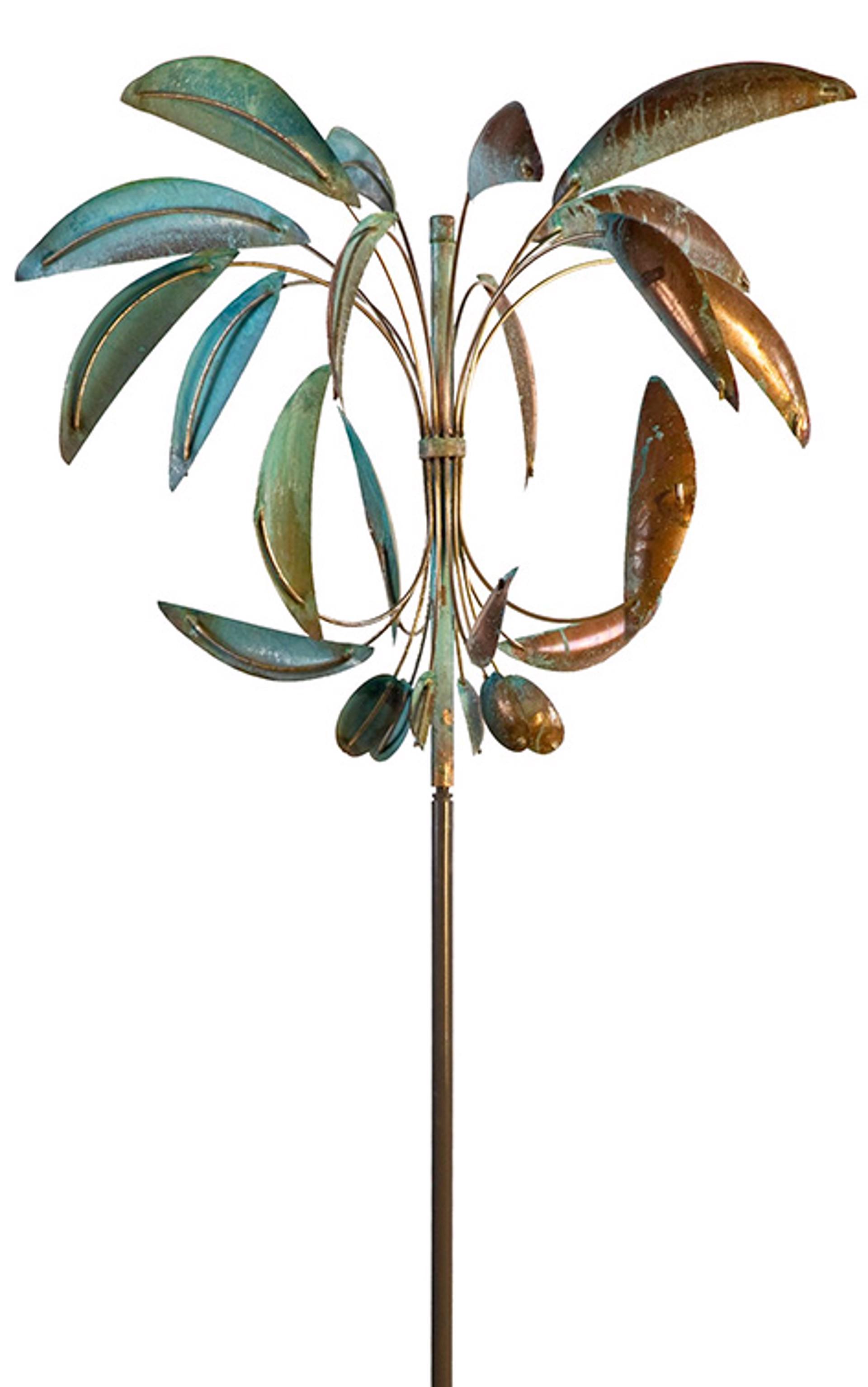 Desert Palm by Lyman Whitaker