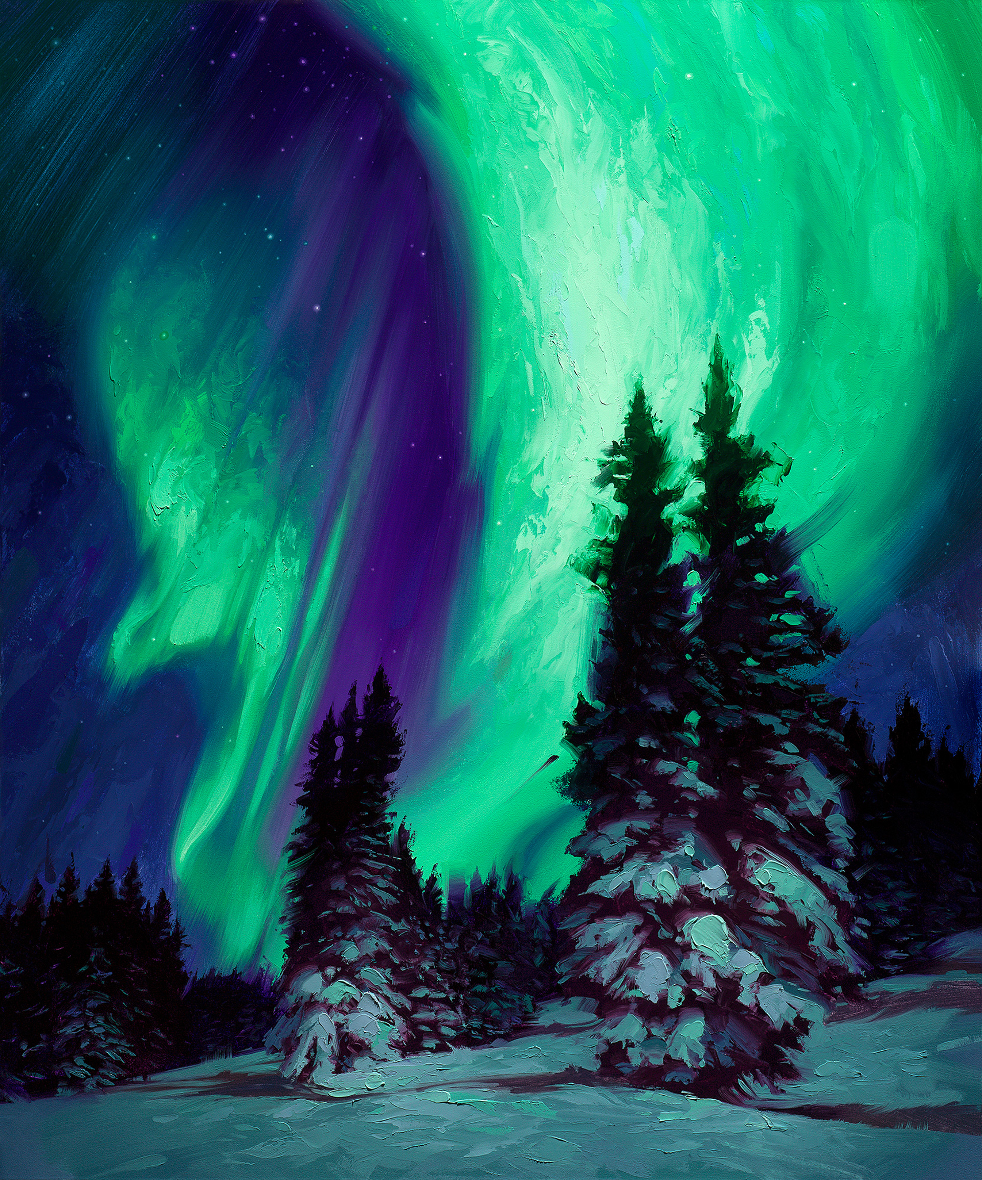 Northern Lights by Rob Rey