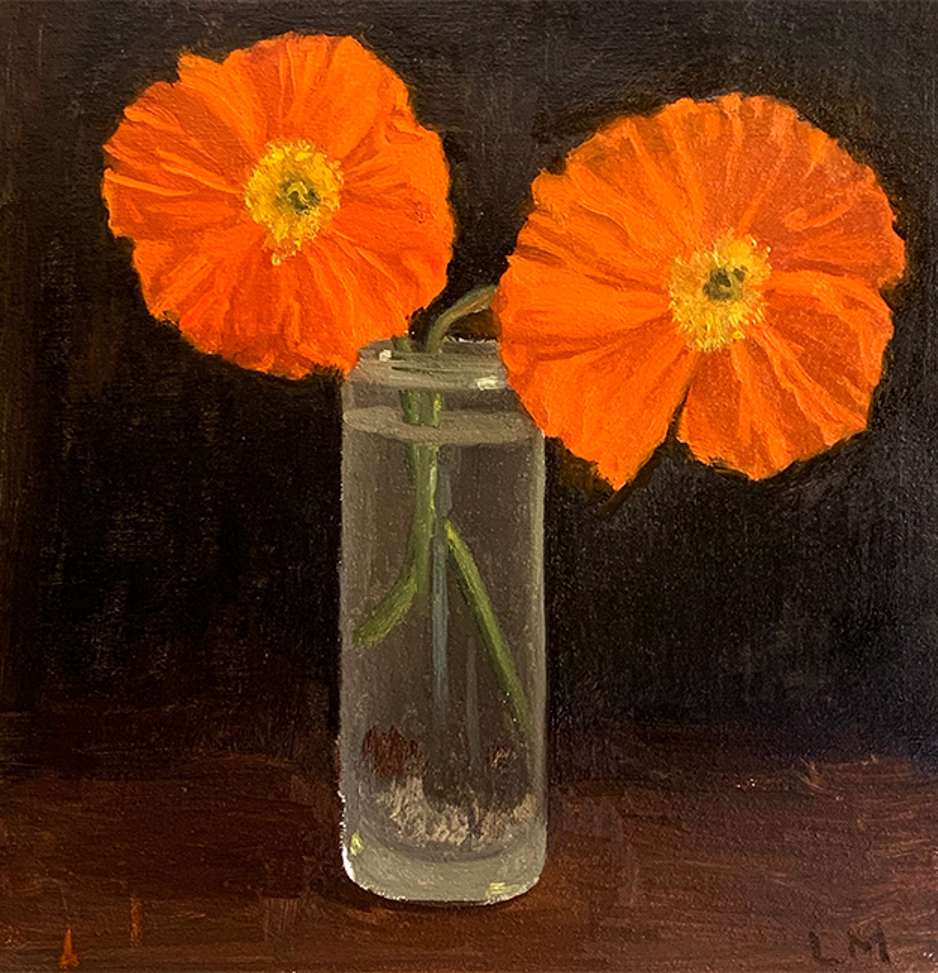 Orange Poppy by Laura Murphey
