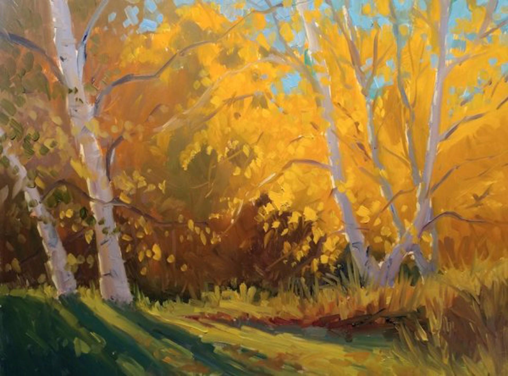 Autumn Glow by Jacobus Baas