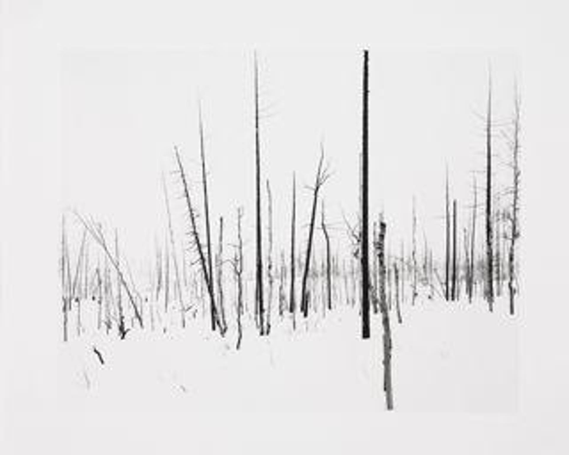 Norilsk (Portfolio) by Darren Almond