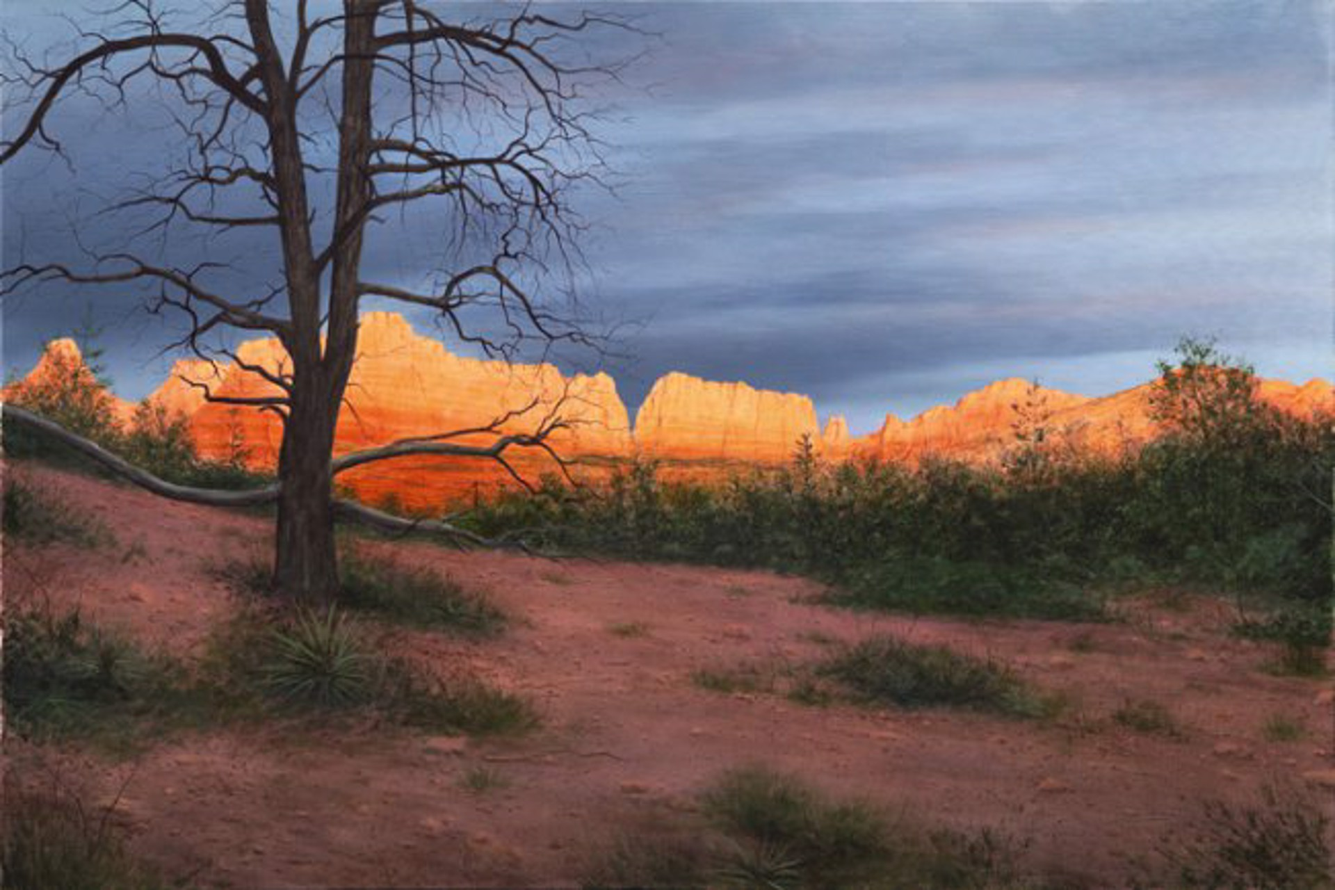 Sedona Sunset by Alexander Volkov