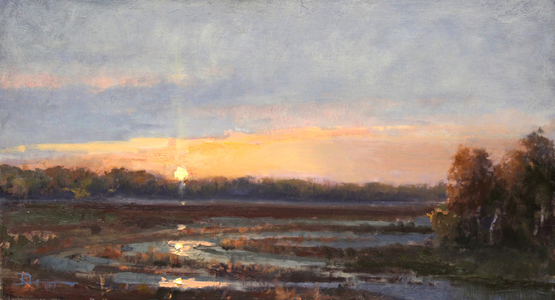 Coral Sunset by Roger Dale Brown
