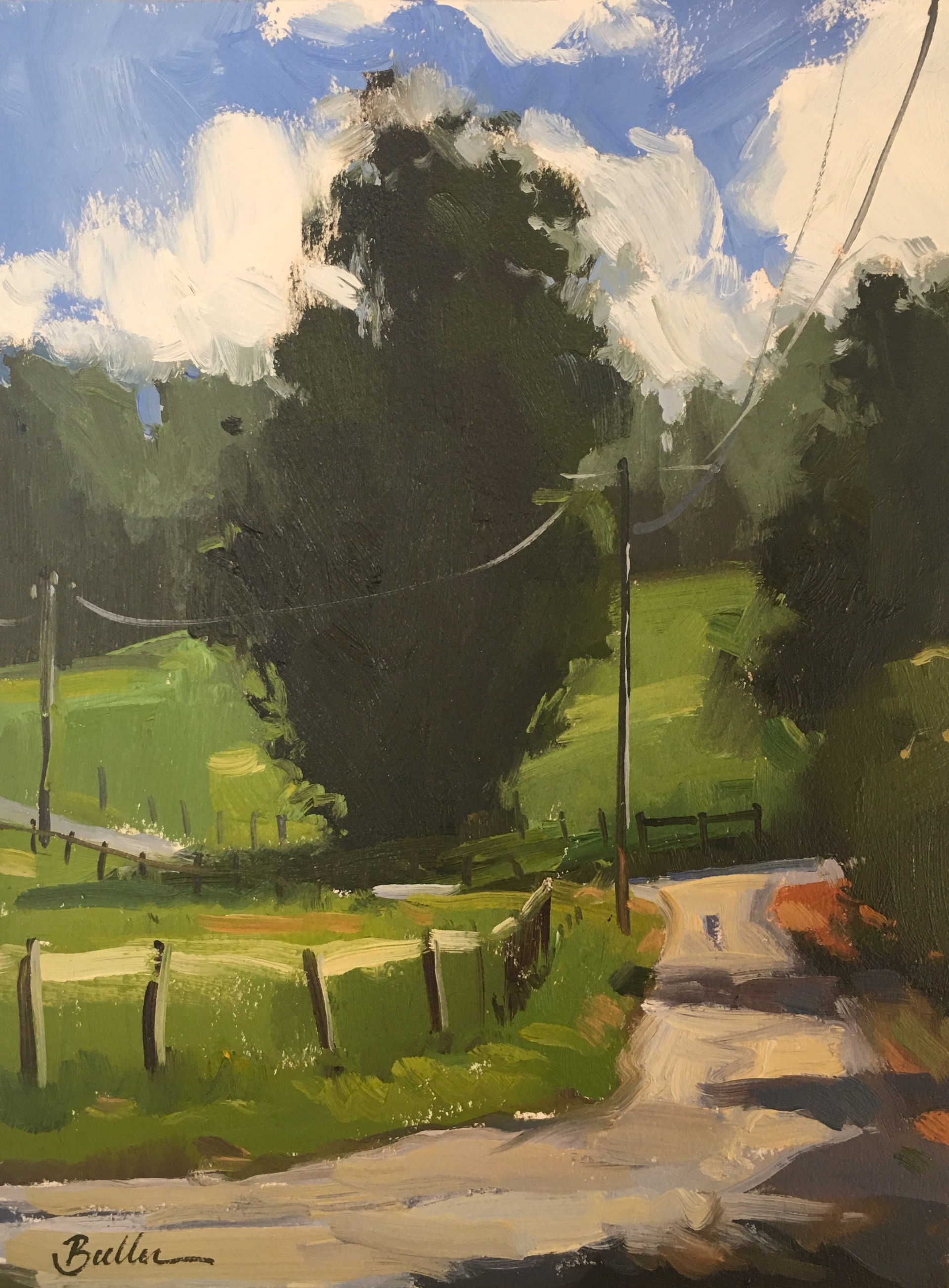 Country View by Samantha Buller