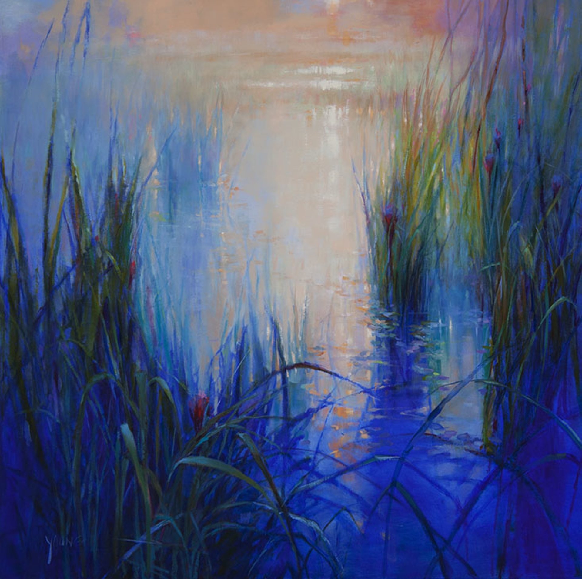 Morning Light by Donna Young