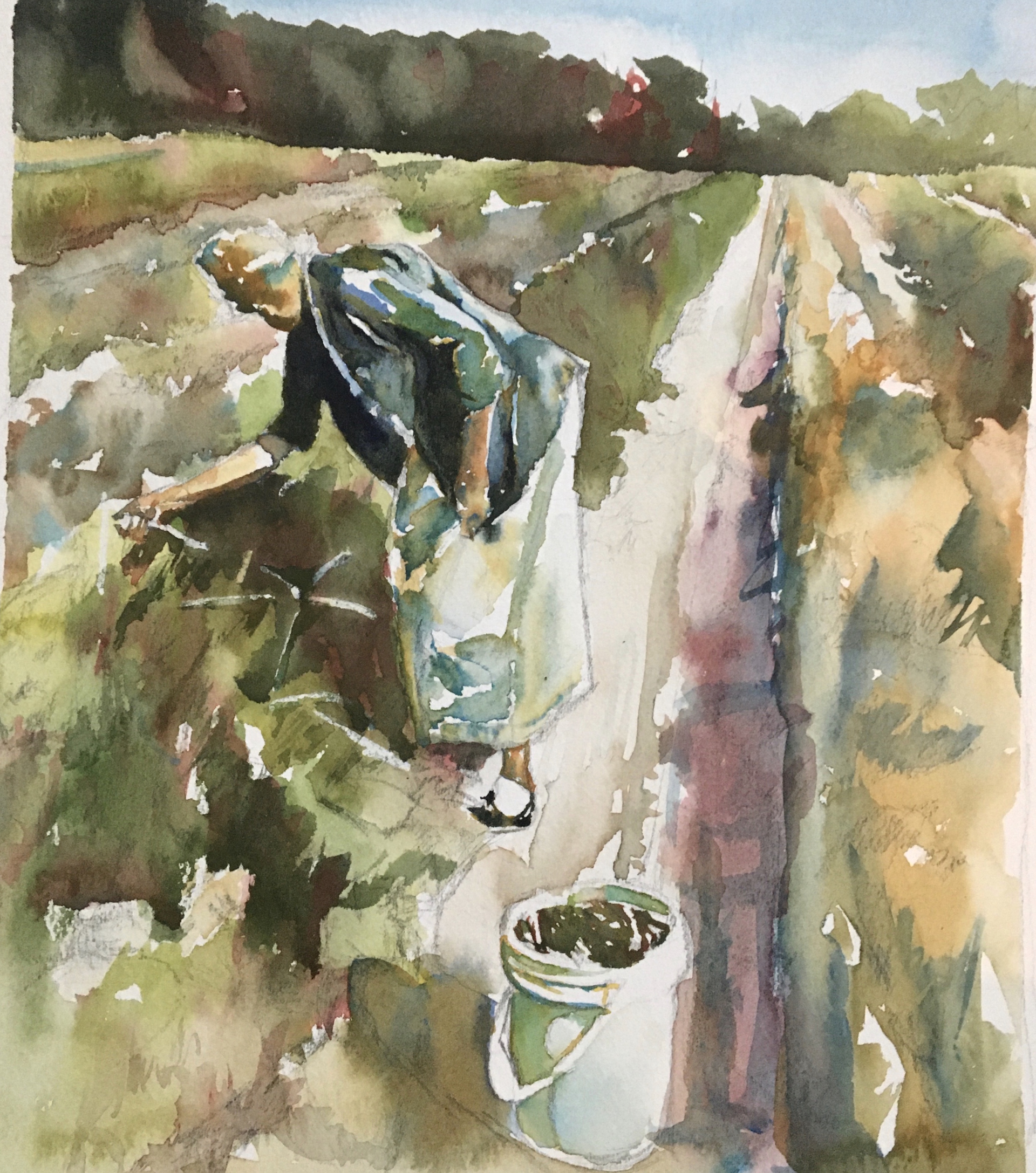 Pickin' Peas by Ment Nelson