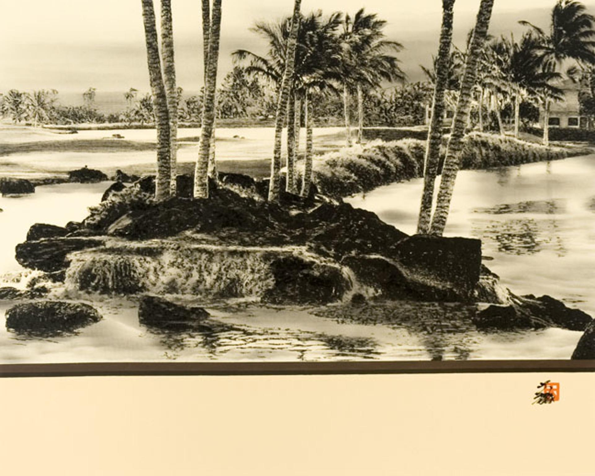 Big Island, Waikaloa by Hisashi Otsuka