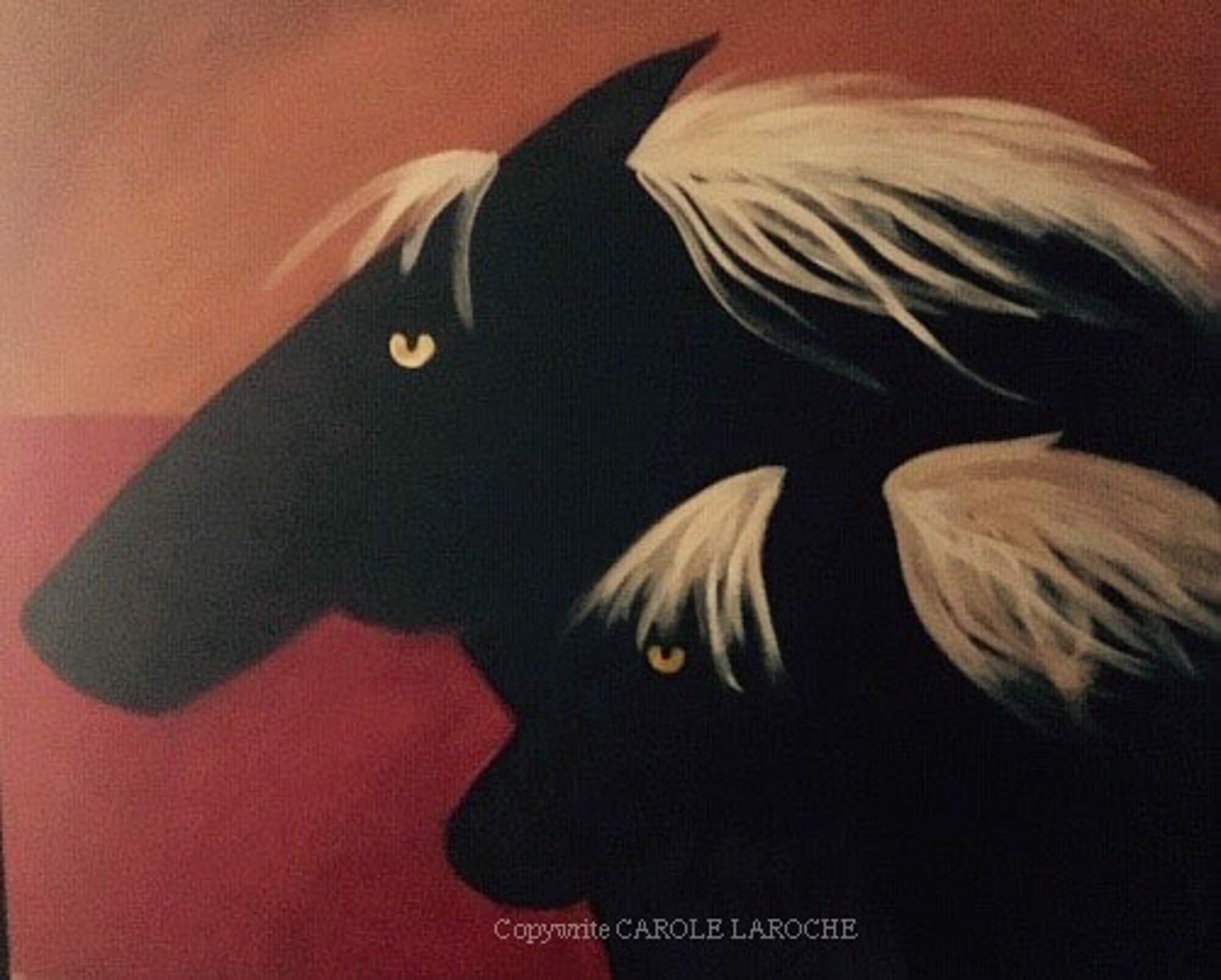 MUSTANGS by Carole LaRoche