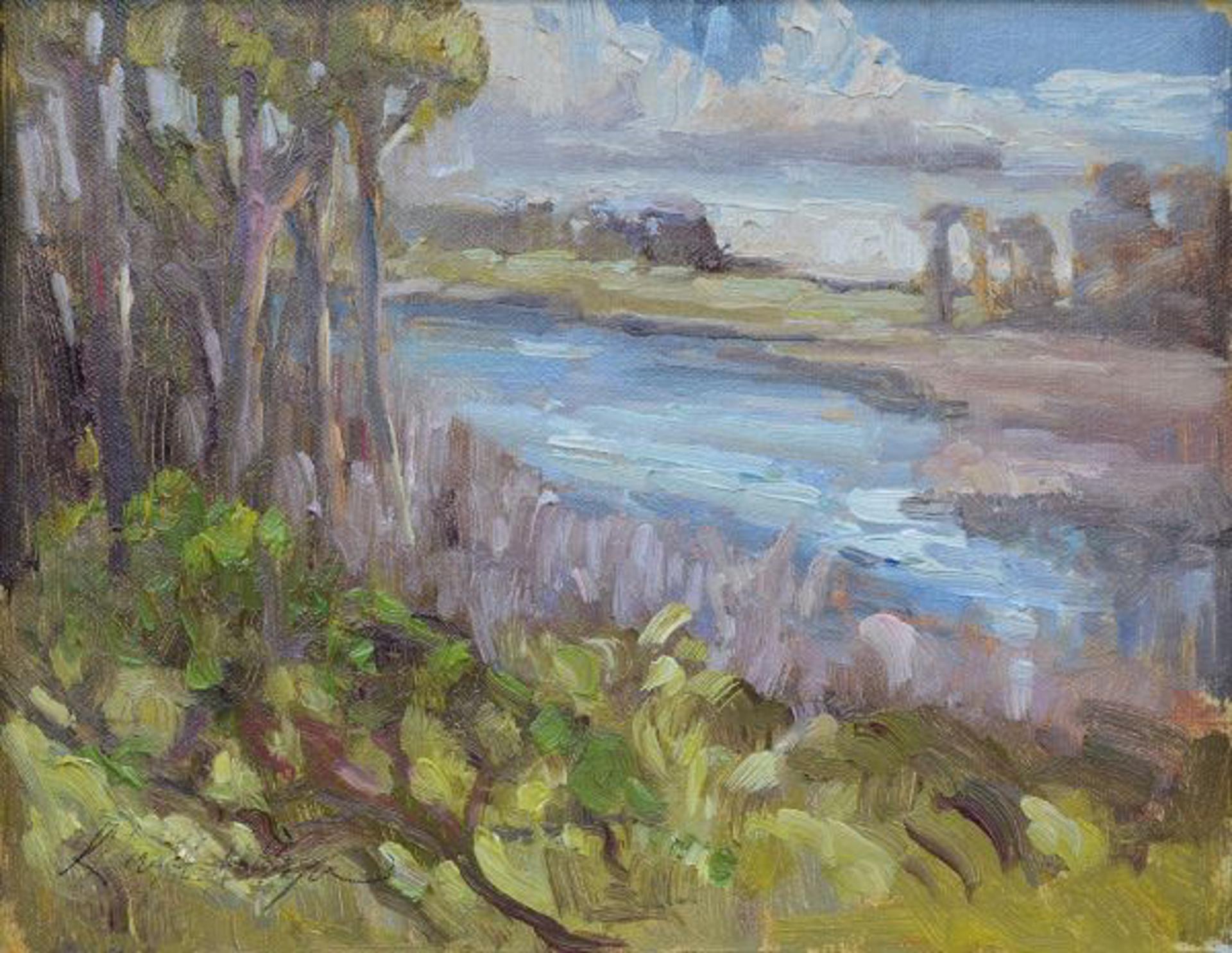 The Kiawah River by Karen Hewitt Hagan