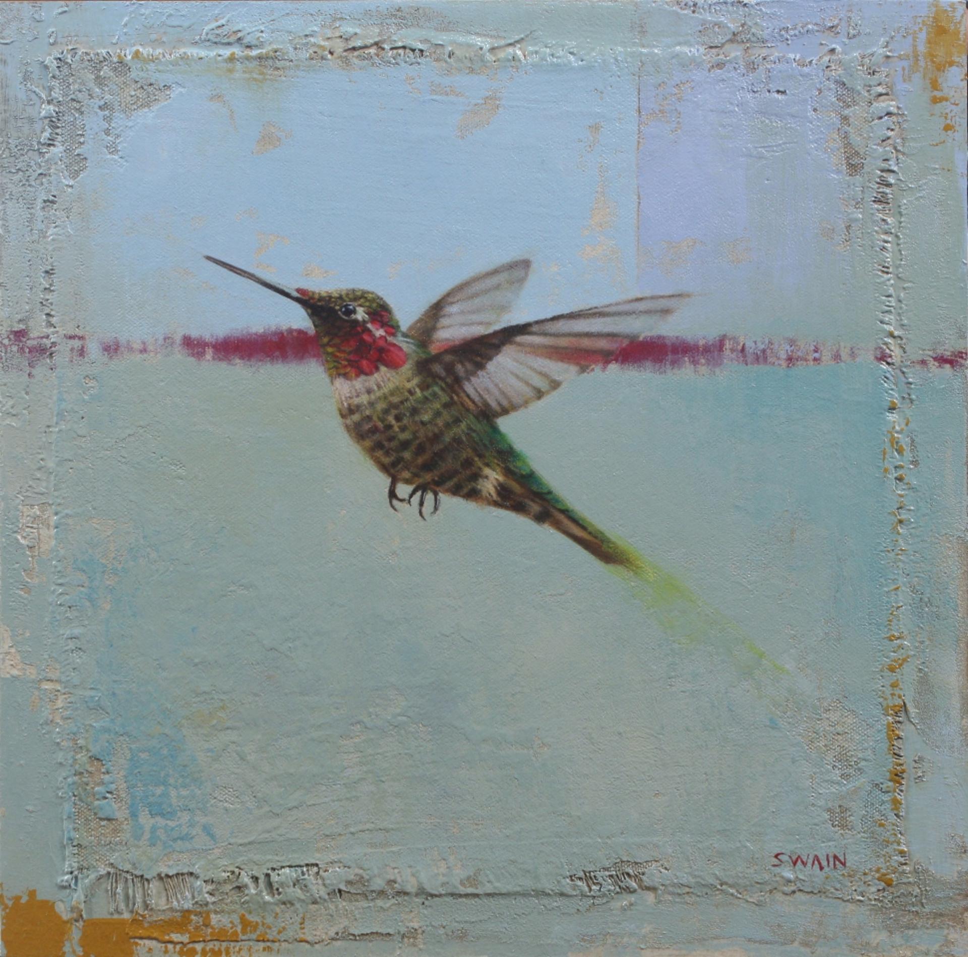 Hummingbird Flight no. 5 by Tyler Swain