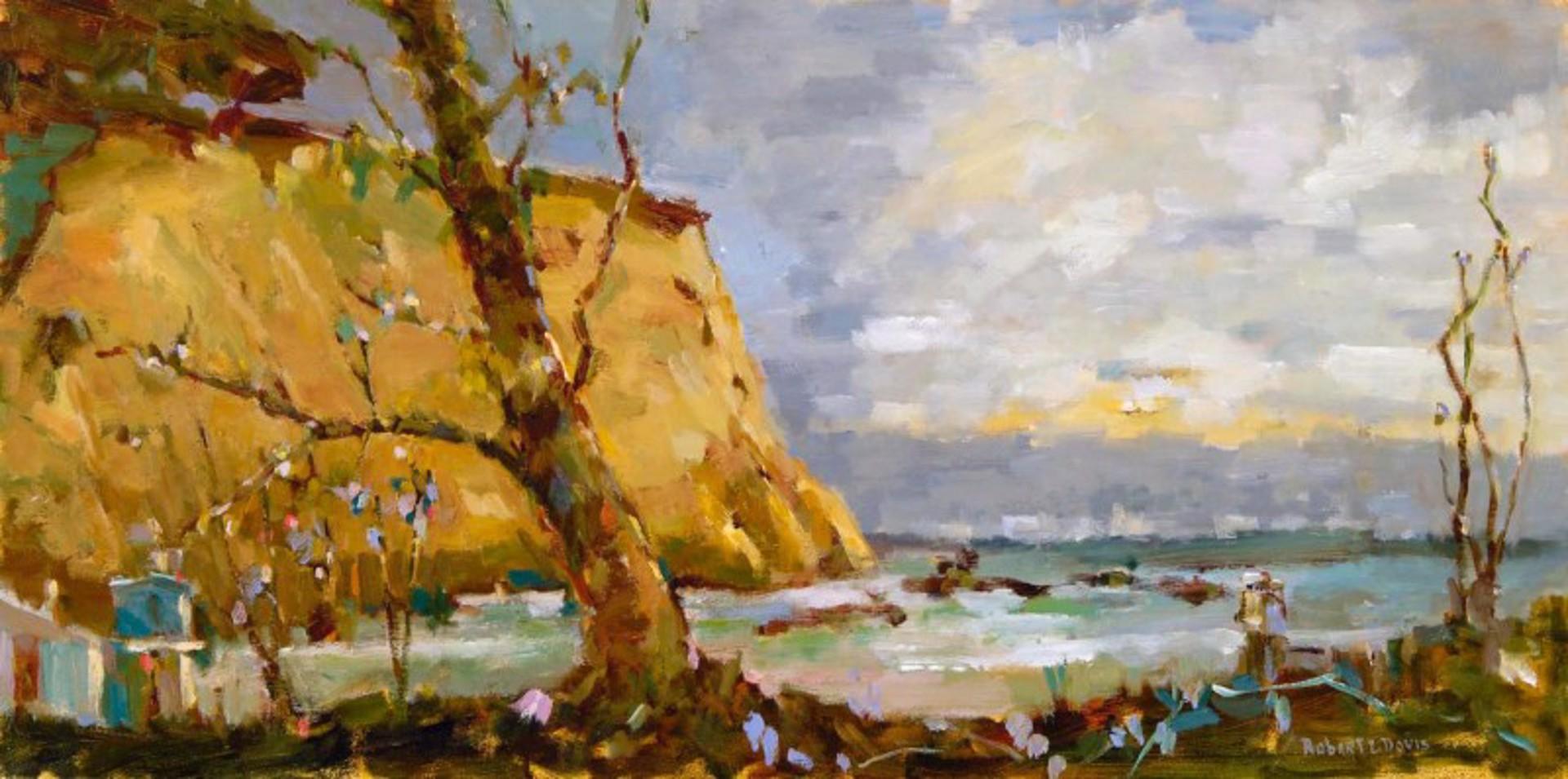 Crystal Cove II by Robert L. Davis