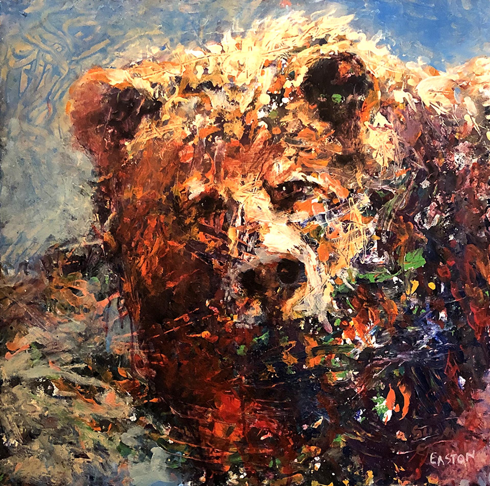 Bear on Blue by Susan Easton Burns