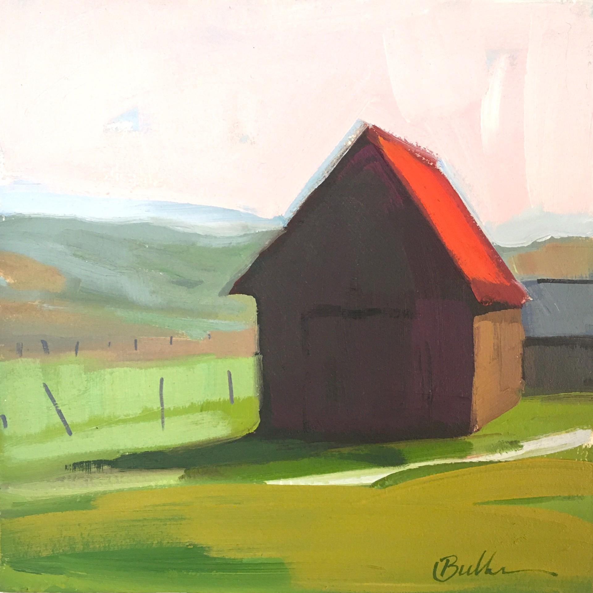 Colorful Barn by Samantha Buller