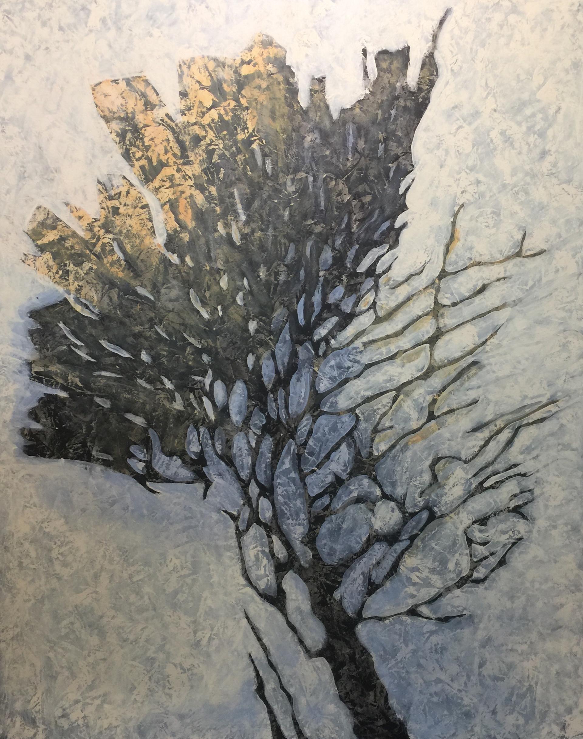 Magic Bush by John Townsend