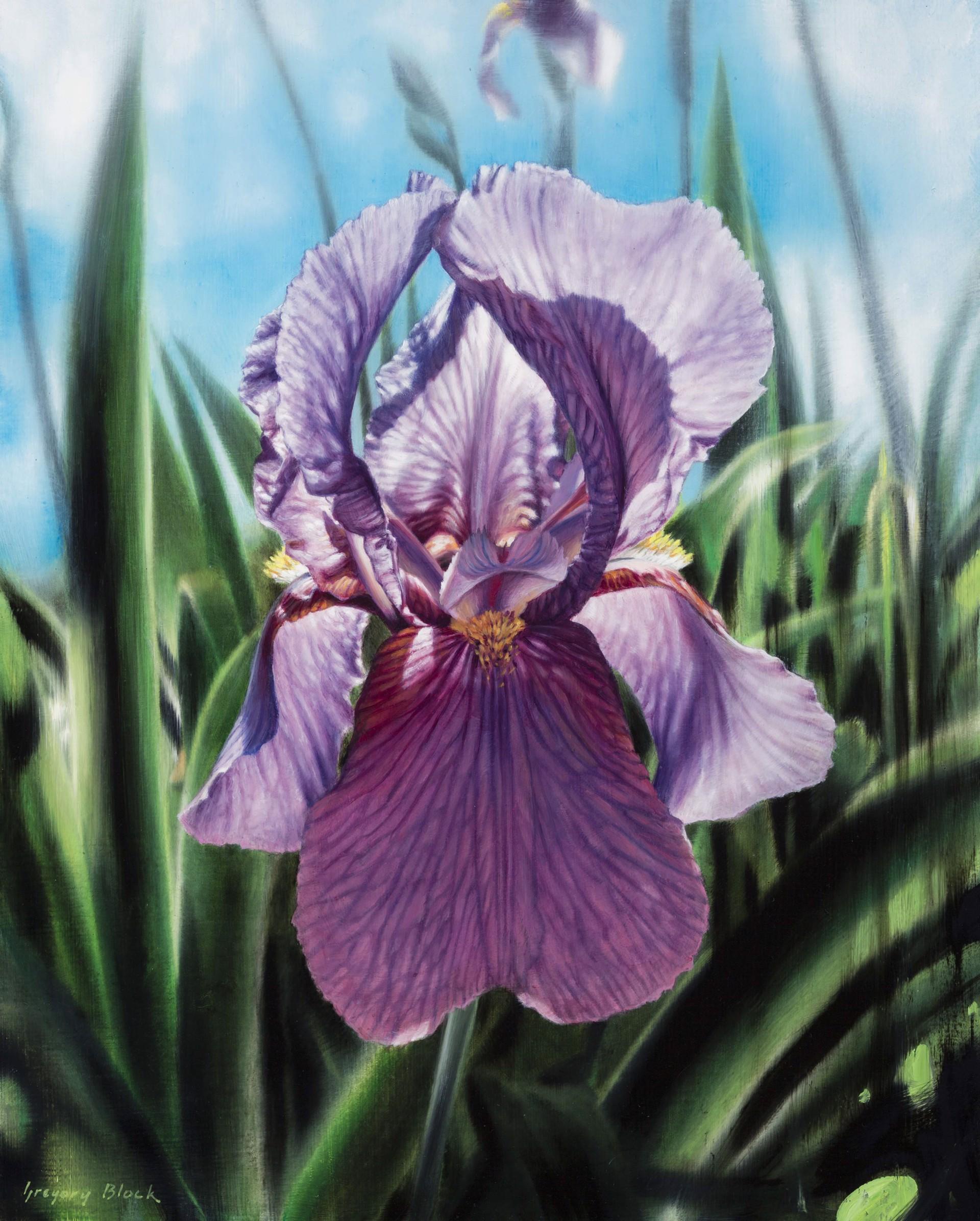 Purple Iris by Gregory Block