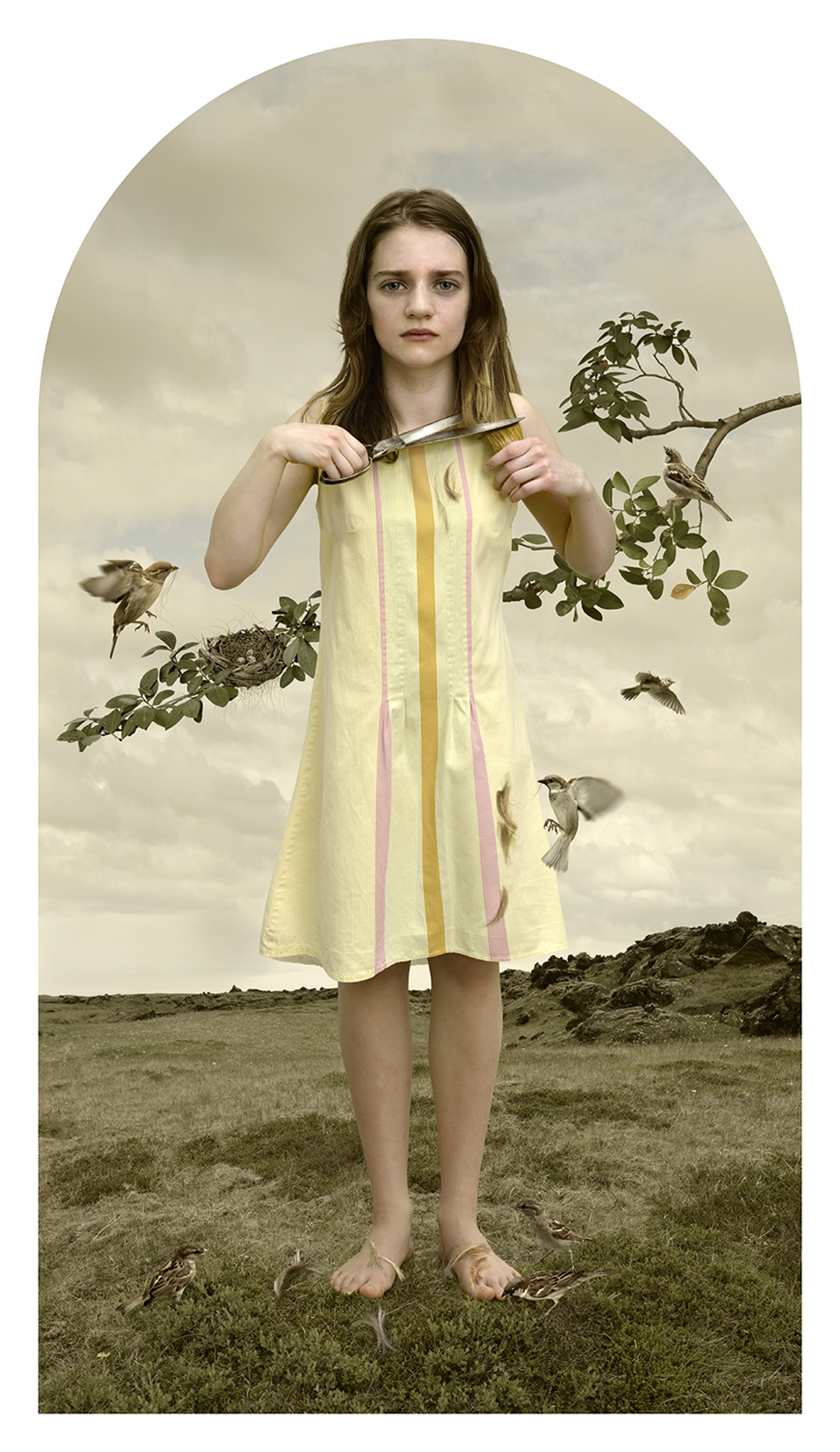 Nesting with Scissors by Tom Chambers
