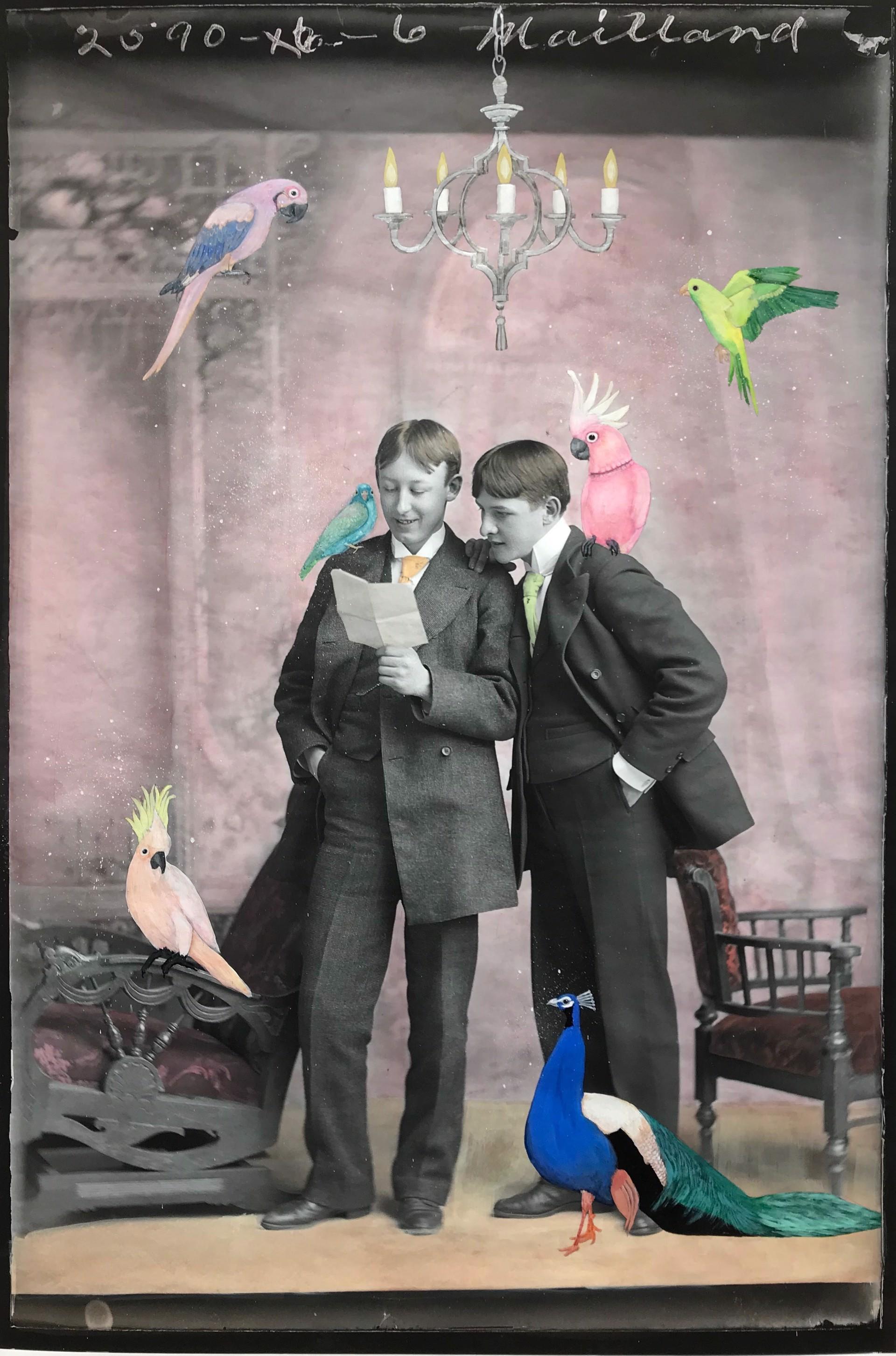 An Interest of Birds by Alexandra Eldridge