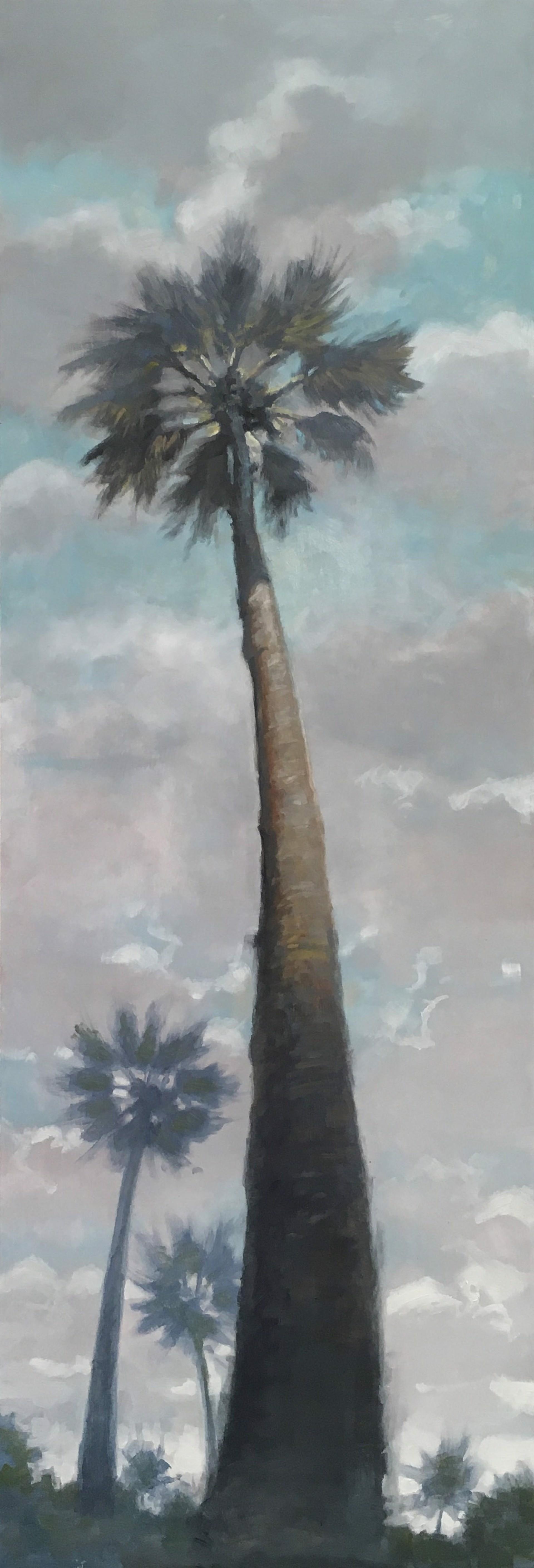 A Soft Breeze by Steven Walker