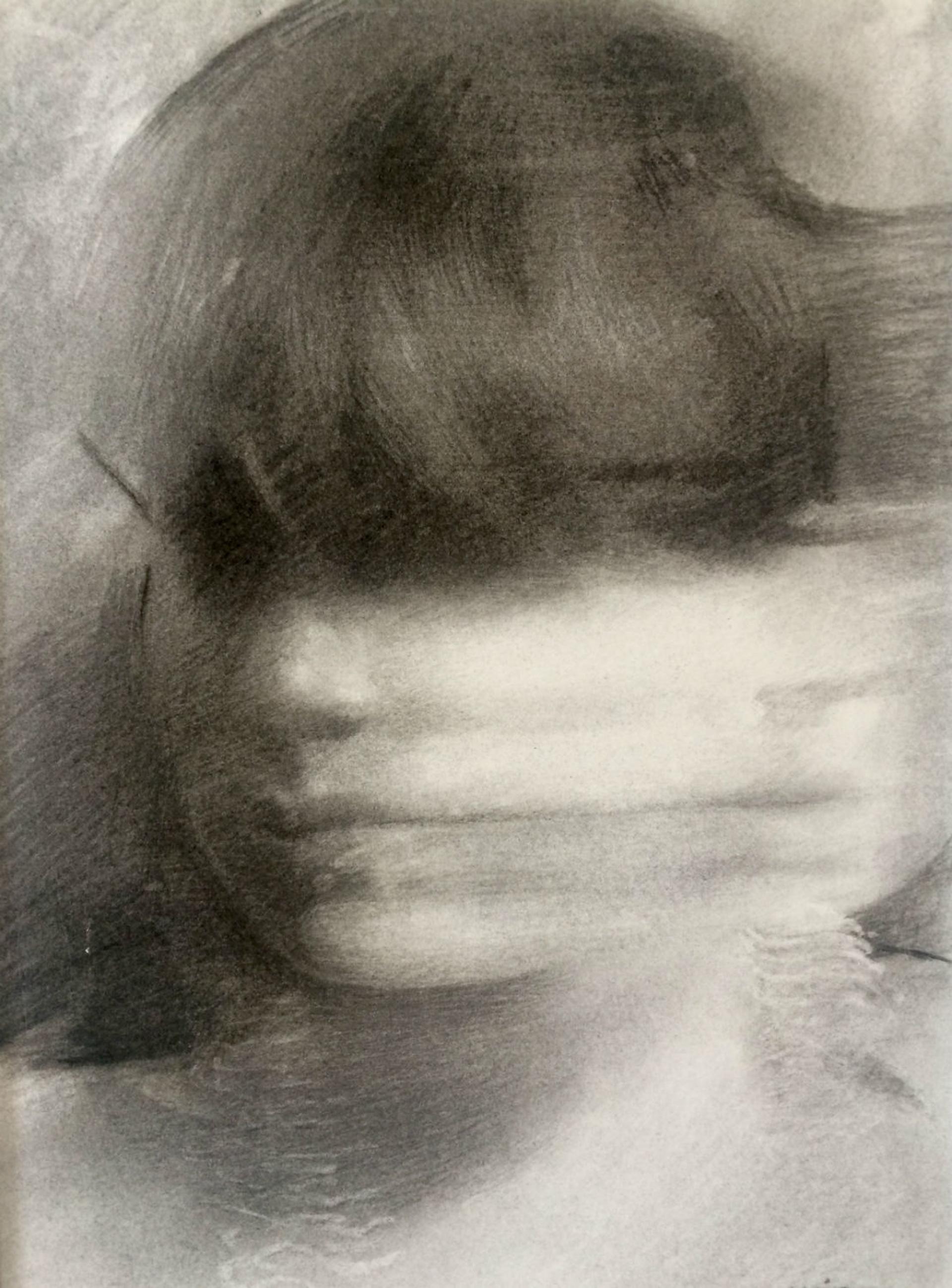 Portrait In Motion by Mia Bergeron