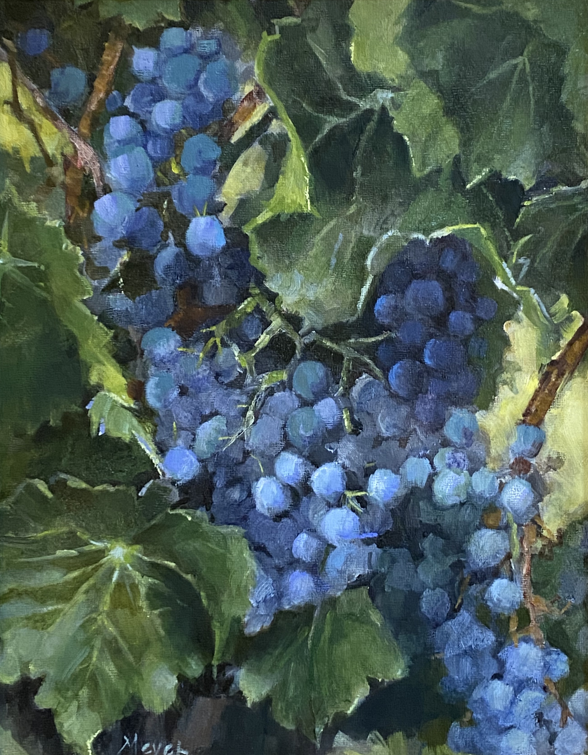 Group of Grapes by Laurie Meyer