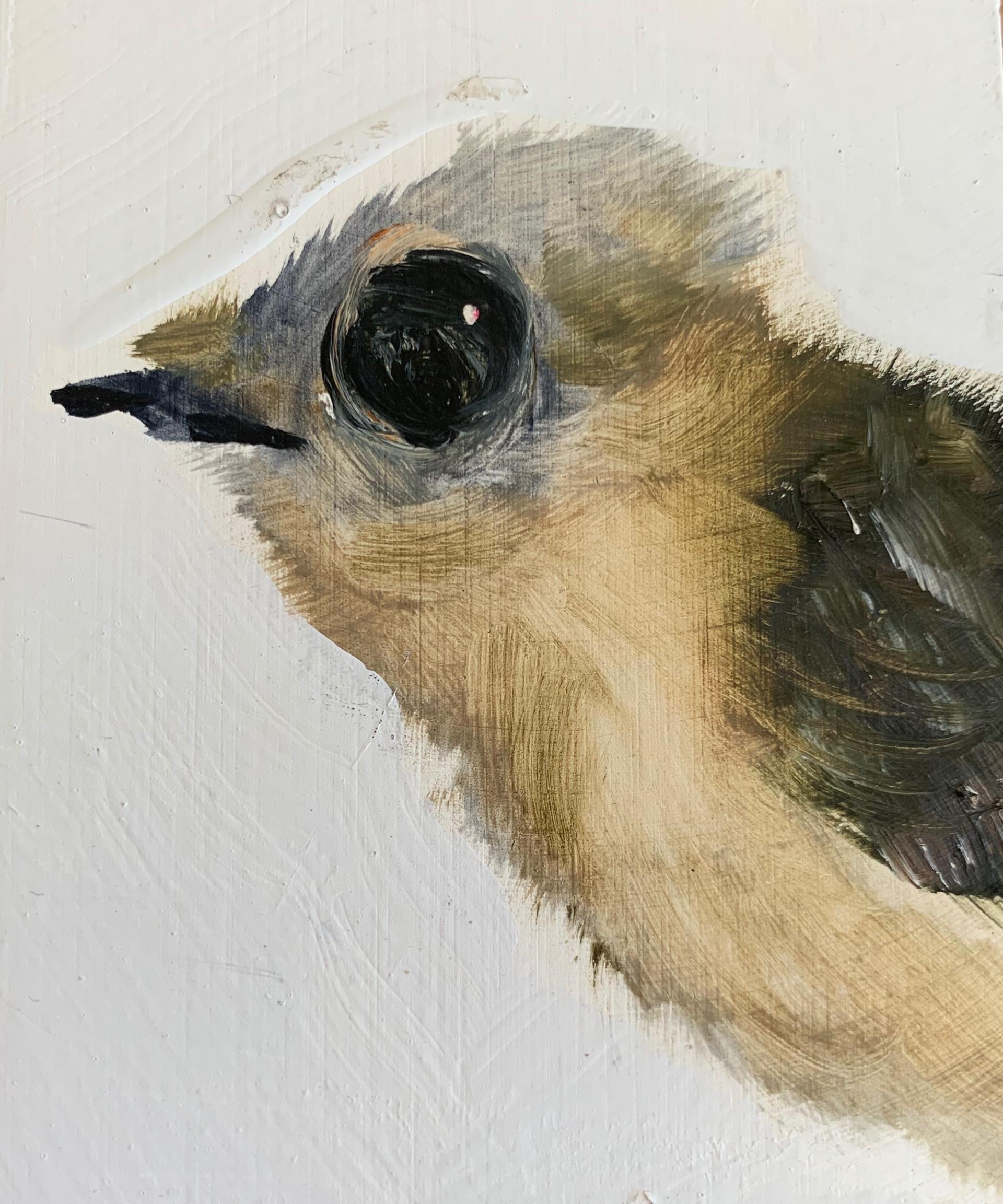 Little Bird #9 by Diane Kilgore Condon