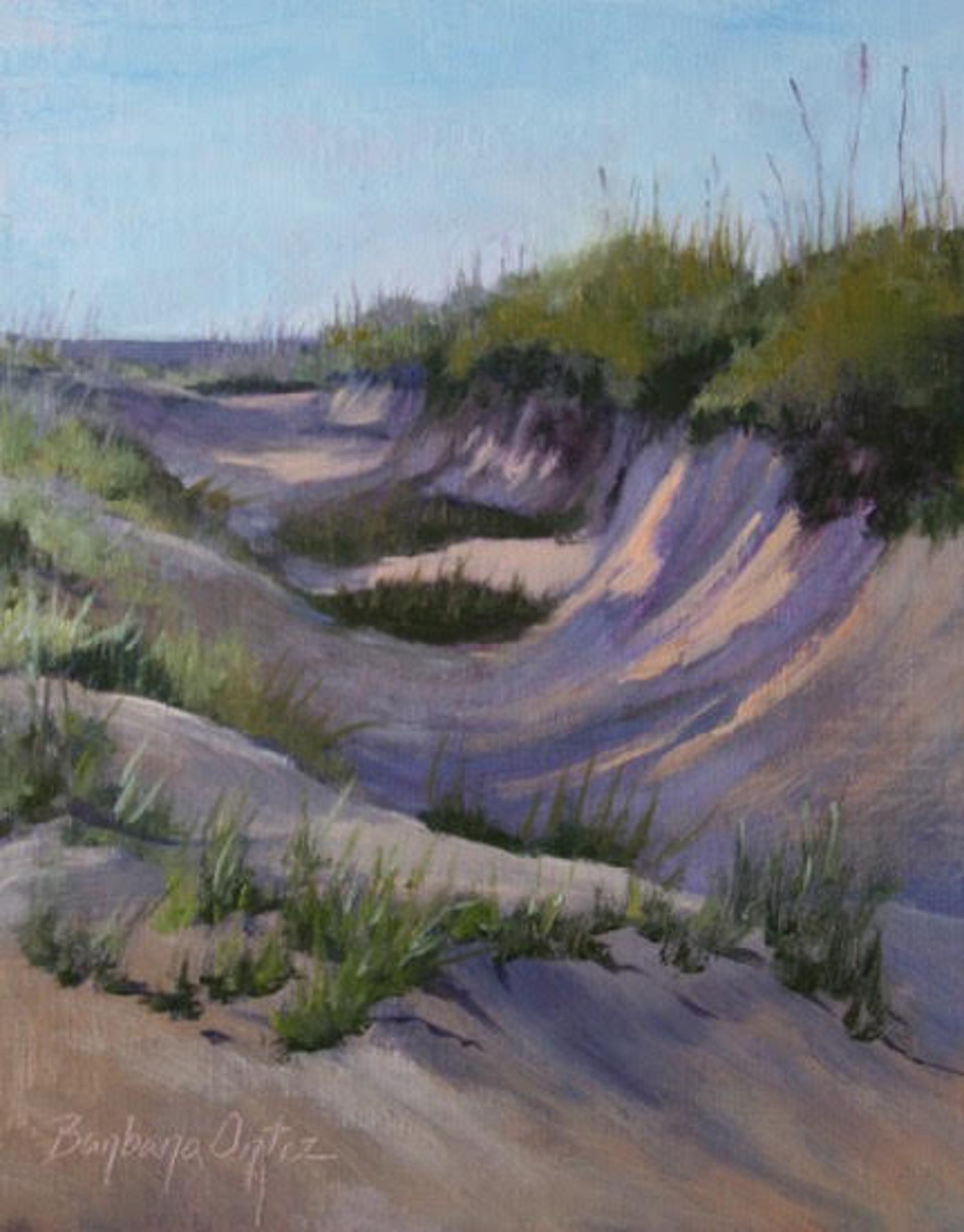 Essential Dunes by Barbara Ortiz