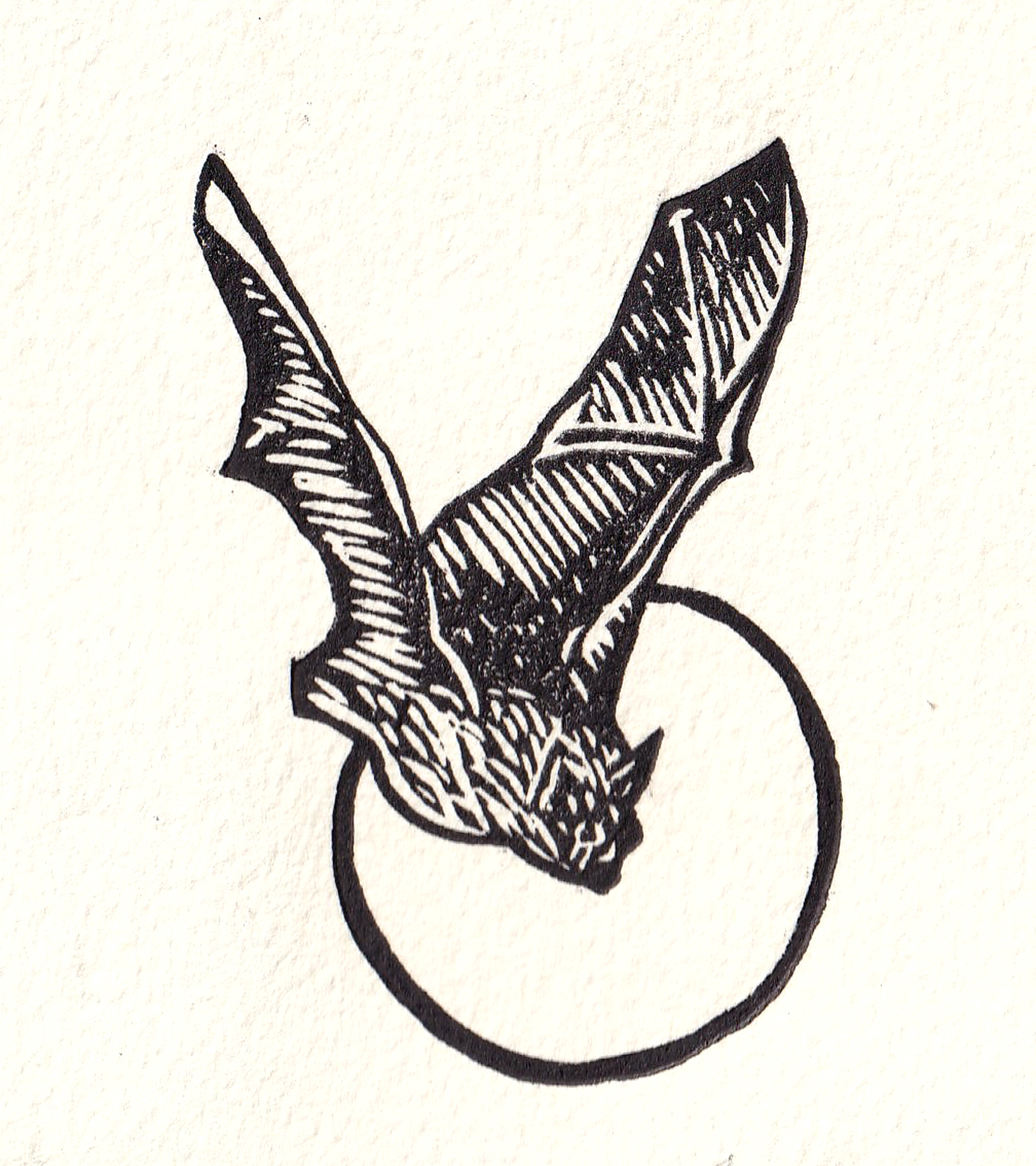 Murcielago by Miguel Jimenez Martinez