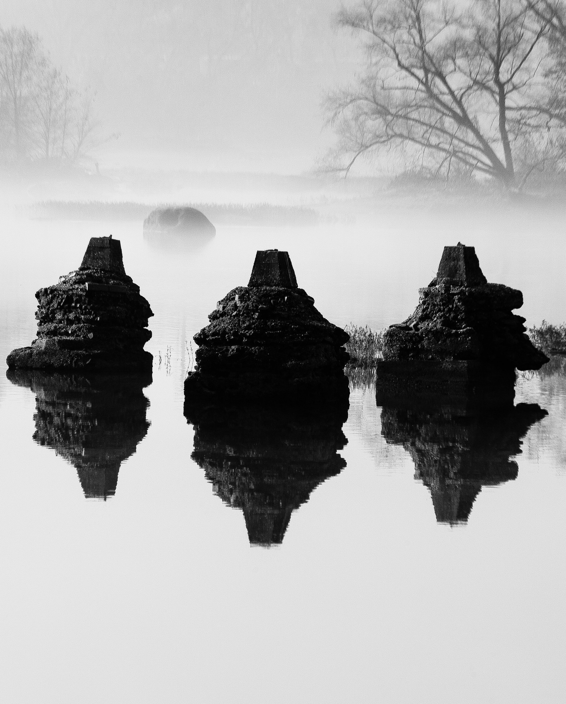 James River Fog V by Alex Nyerges