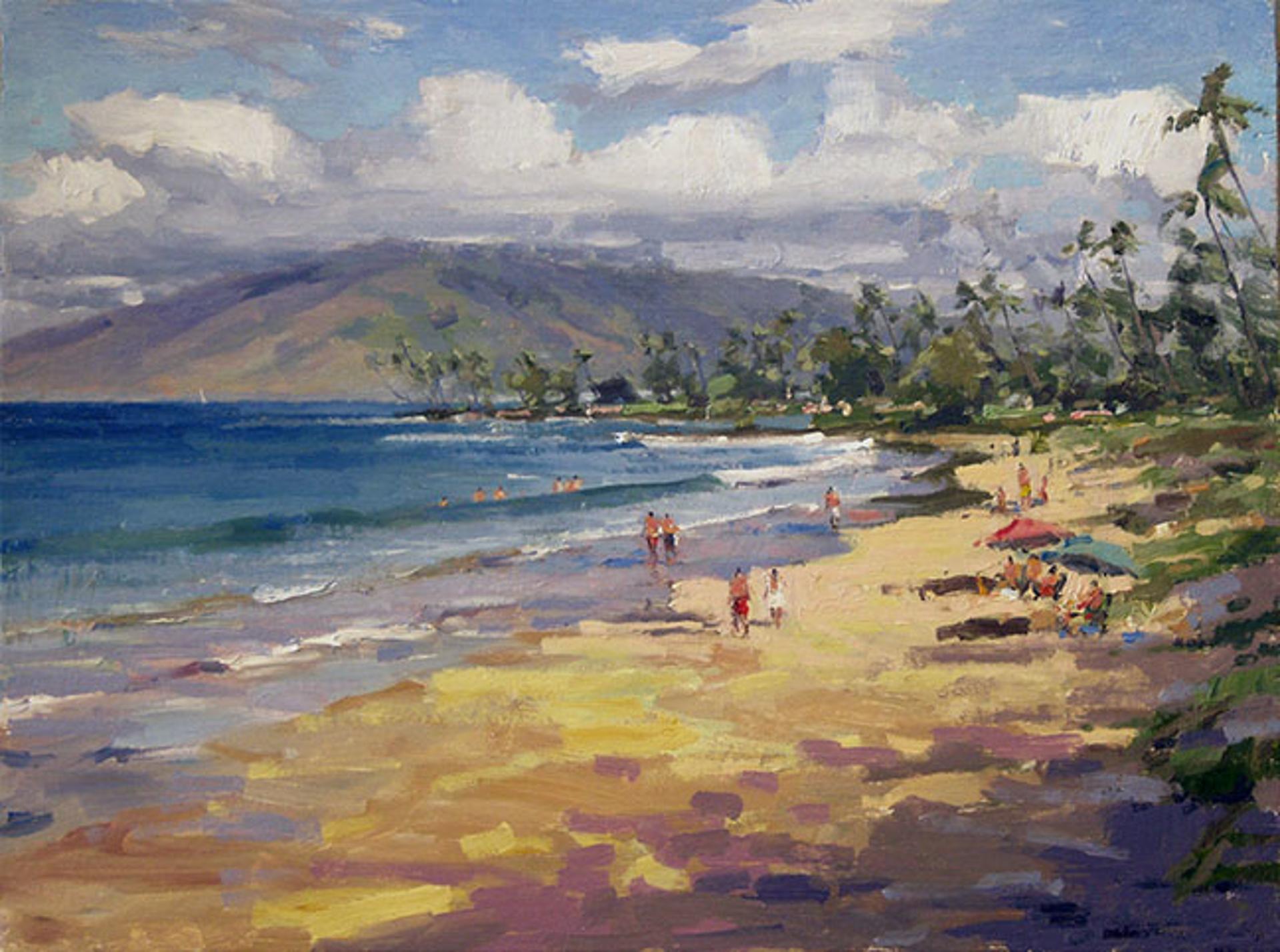 Maui Beach Walks, South Side by Ronaldo Macedo