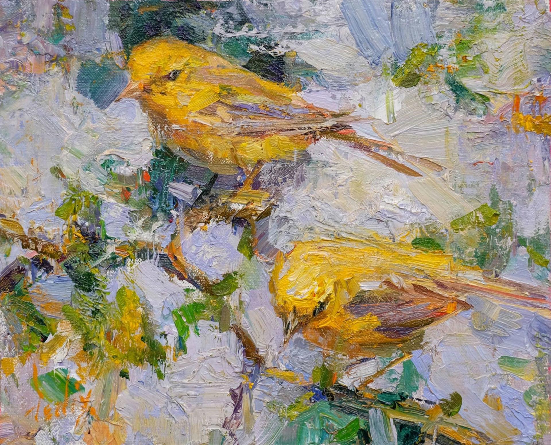 Birds by Derek Penix